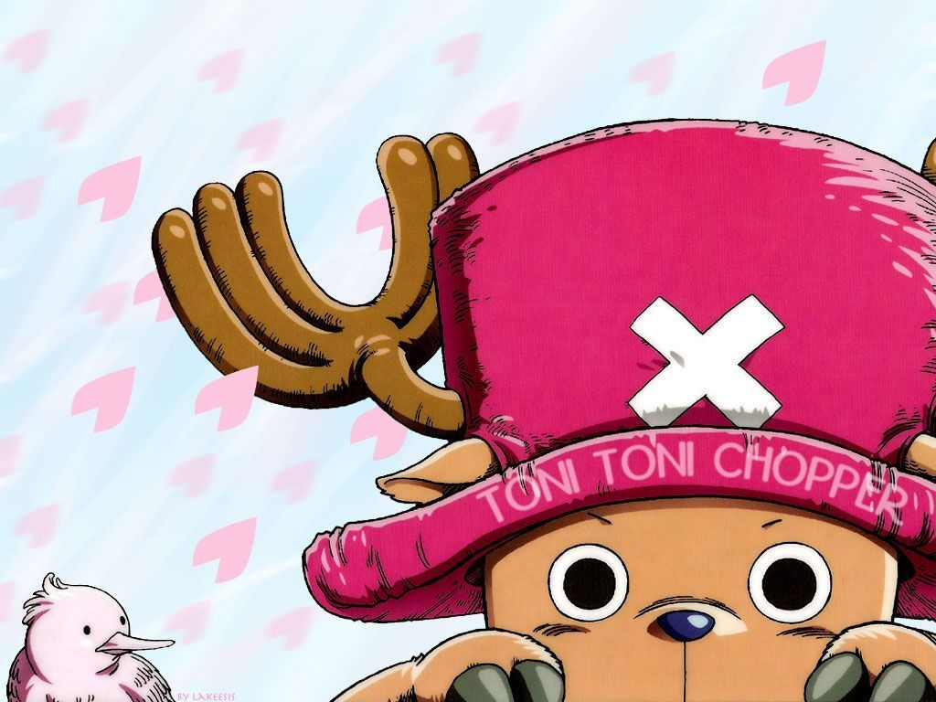 One Piece Chopper Wallpapers Top Free One Piece Chopper