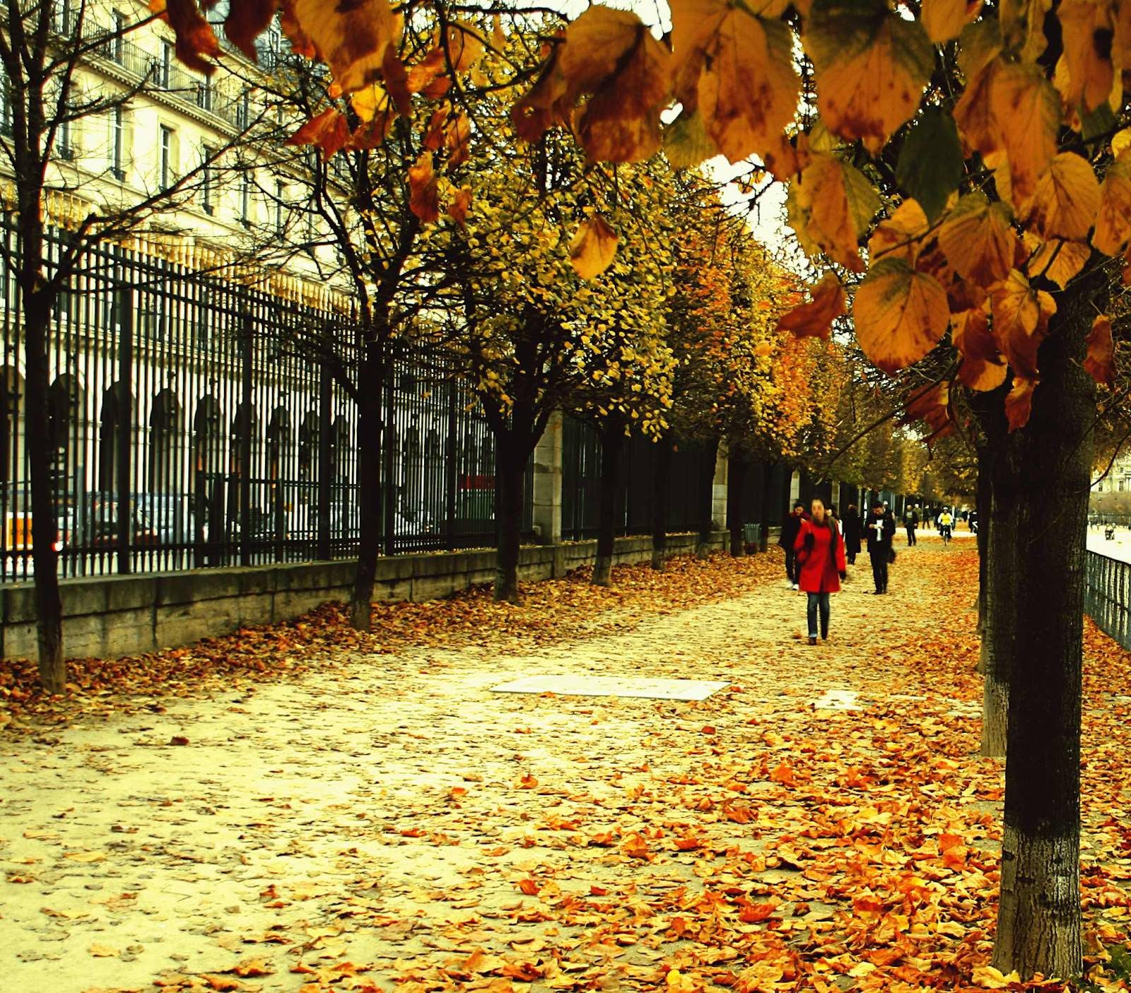 Autumn Street Wallpapers Top Free Autumn Street Backgrounds