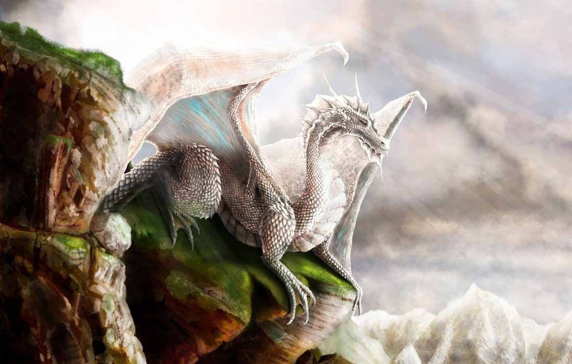 63 best free white dragon wallpapers wallpaperaccess