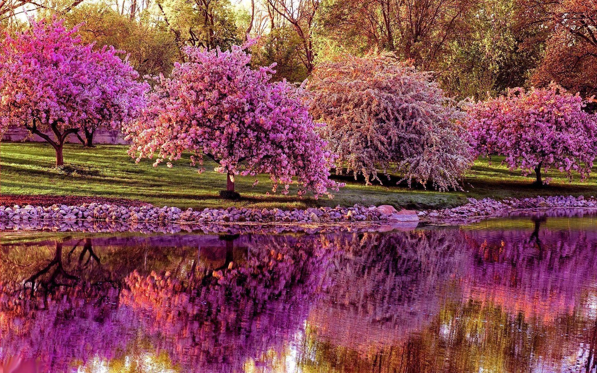 Spring Desktop Wallpapers - Top Free Spring Desktop ...