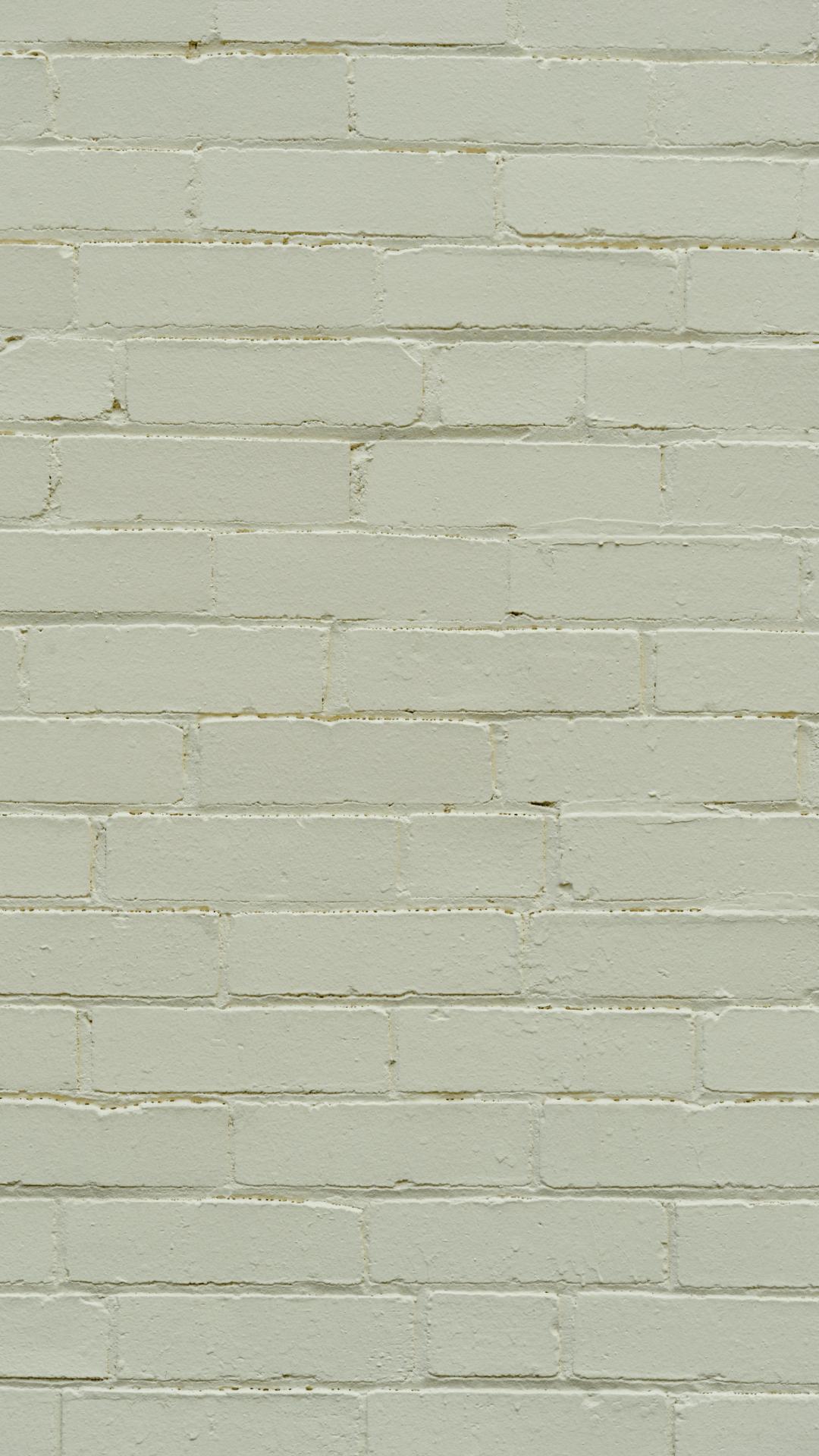 1080x1920 Hướng dẫn cơ bản về hình nền thẩm mỹ xanh Sage miễn phí.  Chỉ Jes Lyn