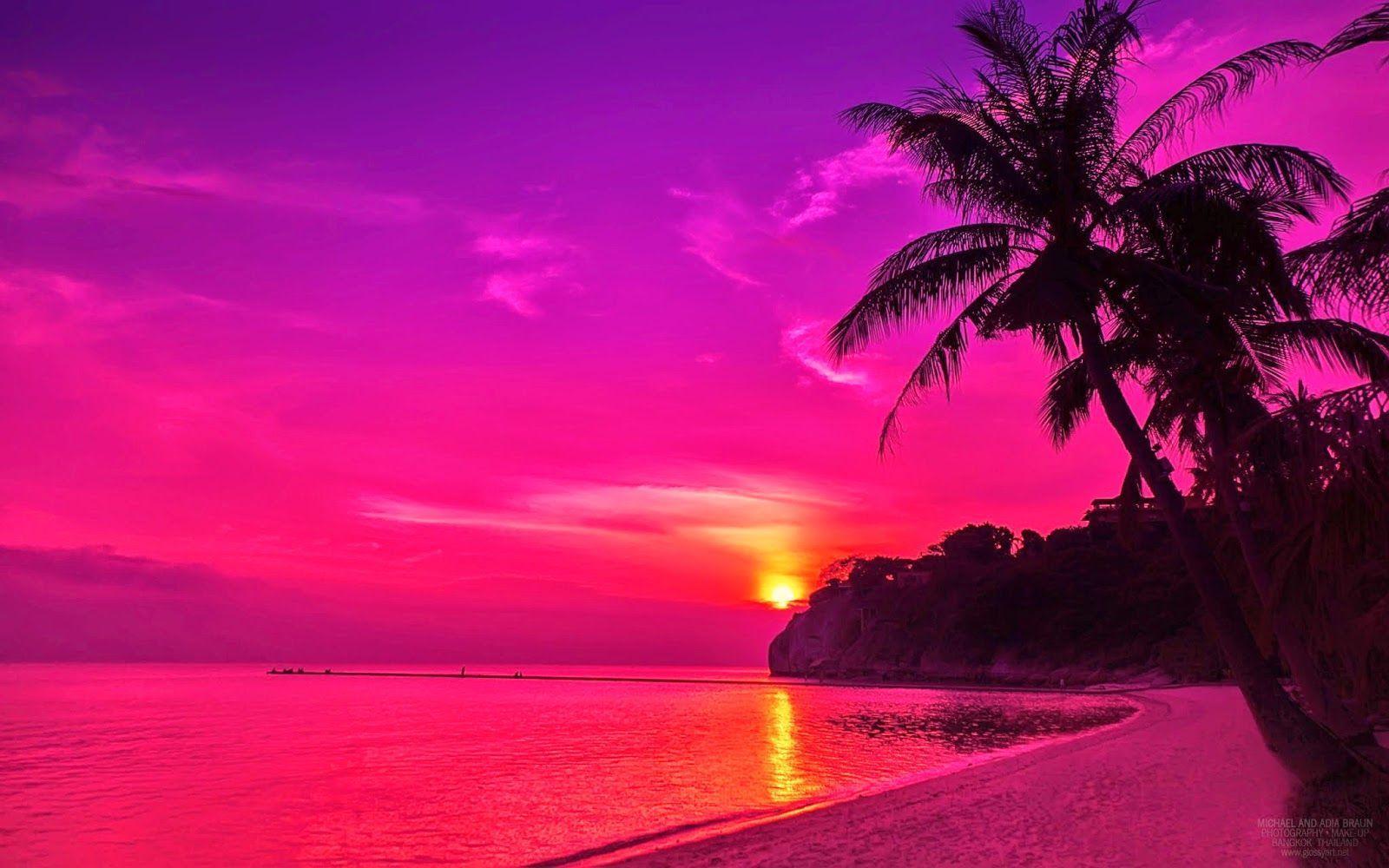 61 Best Free Pink Beach Wallpapers