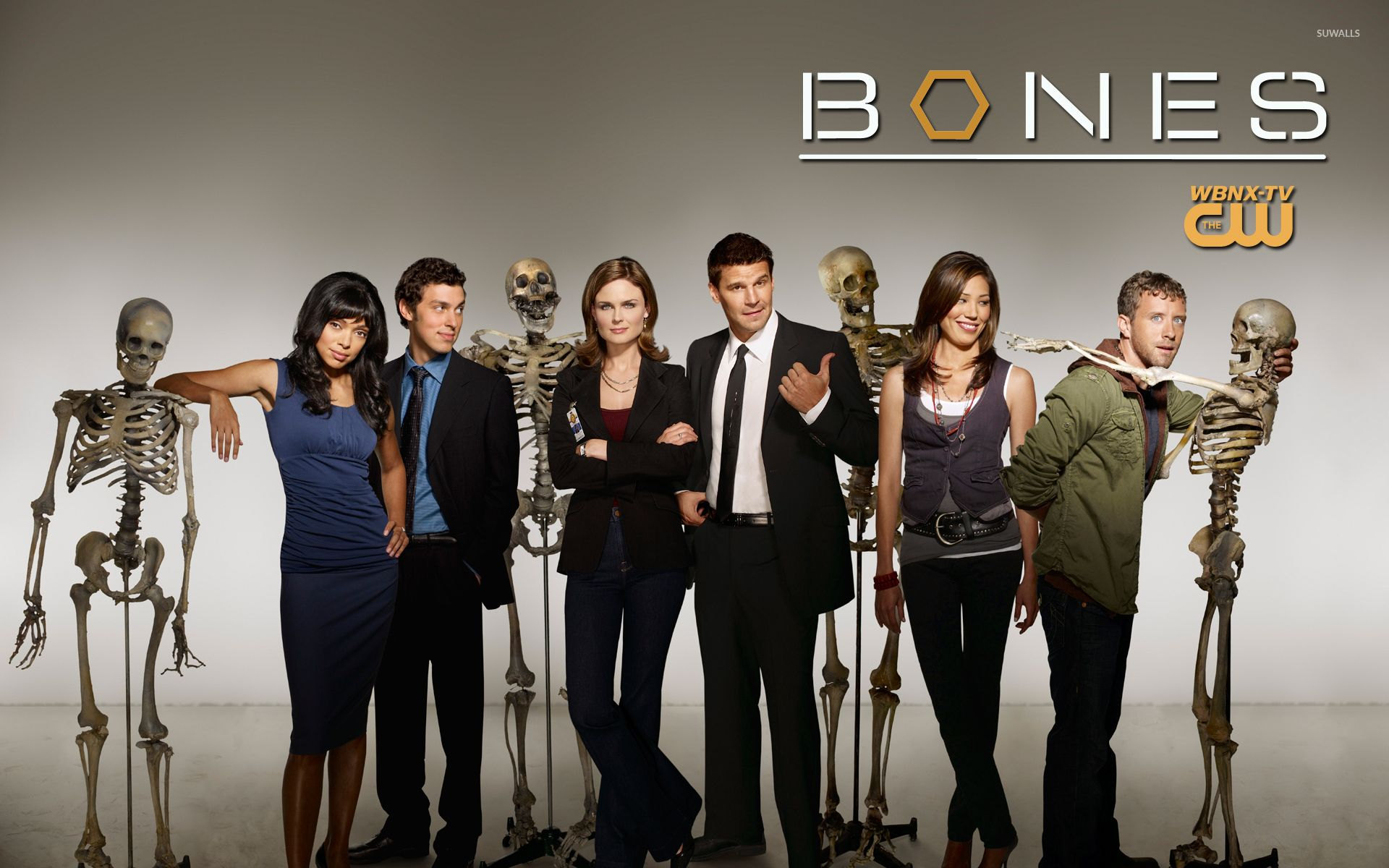 Bones Tv Show Logo Wallpapers Top Free Bones Tv Show Logo Backgrounds Wallpaperaccess