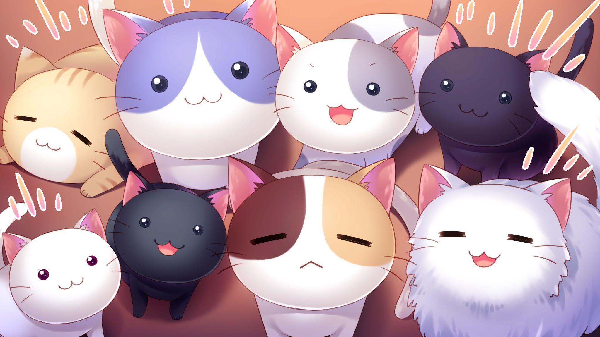 Kawaii Cat Wallpapers Top Free Kawaii Cat Backgrounds