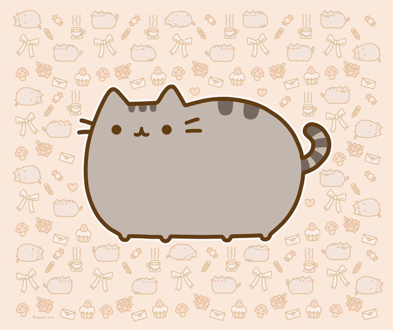 Pusheen The Cat Wallpapers Top Free Pusheen The Cat Backgrounds Wallpaperaccess