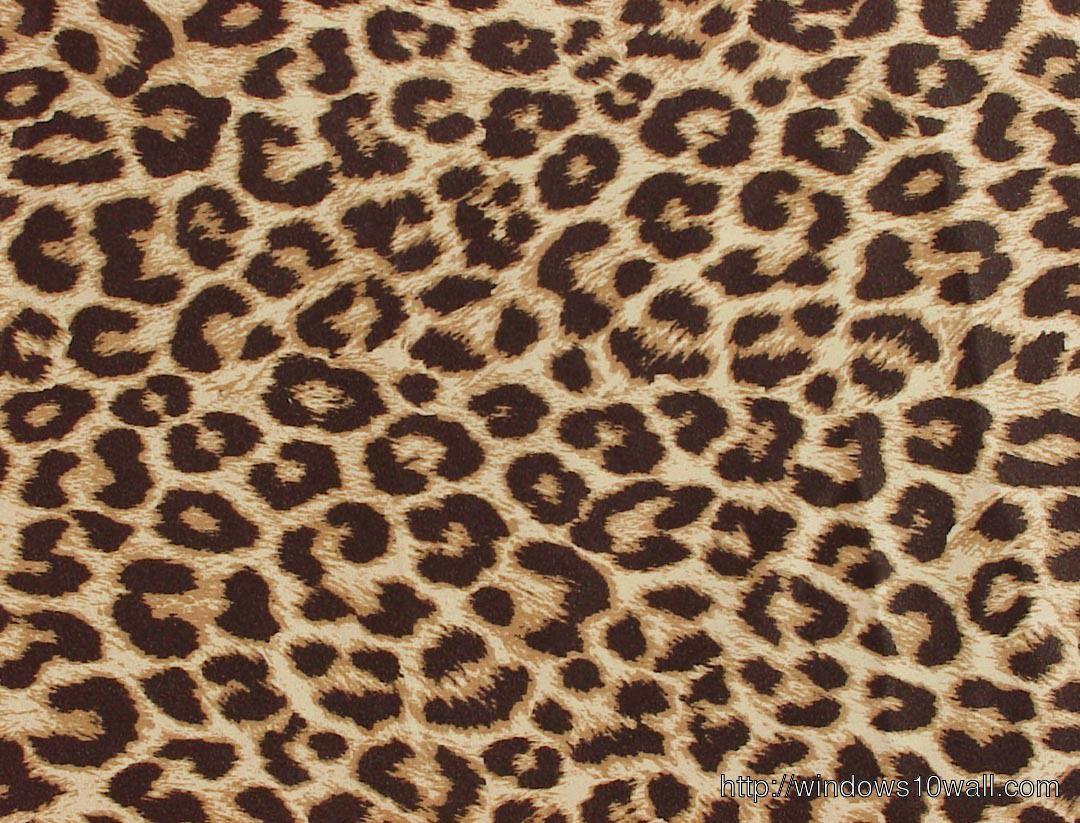Animal Print Laptop Wallpapers Top Free Animal Print Laptop Backgrounds Wallpaperaccess