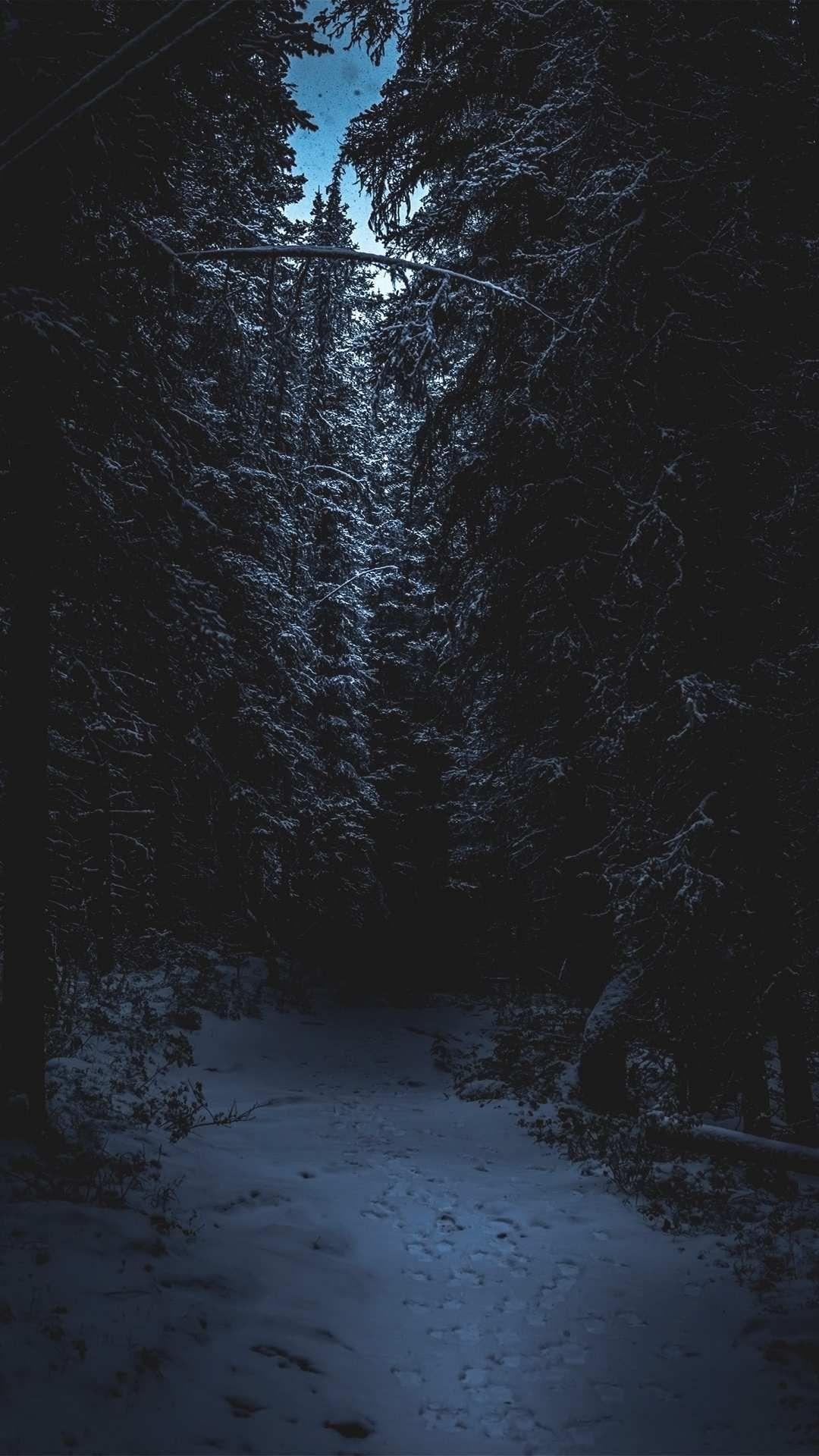 Dark Winter iPhone Wallpapers   Top Free Dark Winter iPhone ...