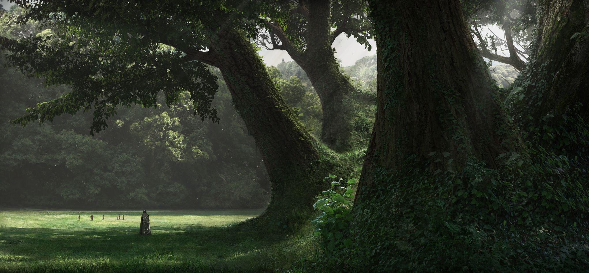 2048x948 Nền rừng thời Trung cổ (Trang 1)