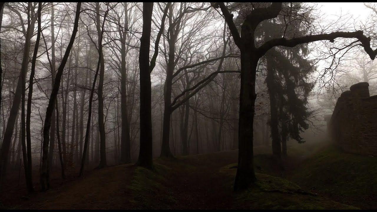 Hình nền rừng sương mù 1280x720 - Hình nền lâu đài bóng tối