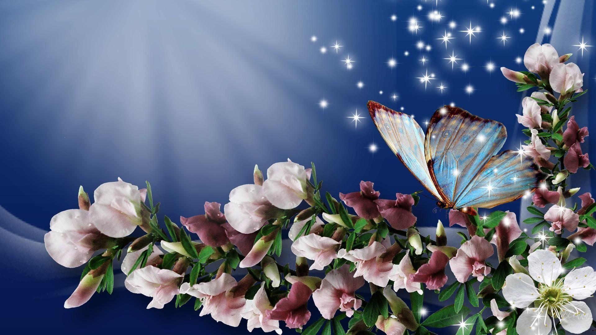 1920x1080 Stars and Butterflies hình nền