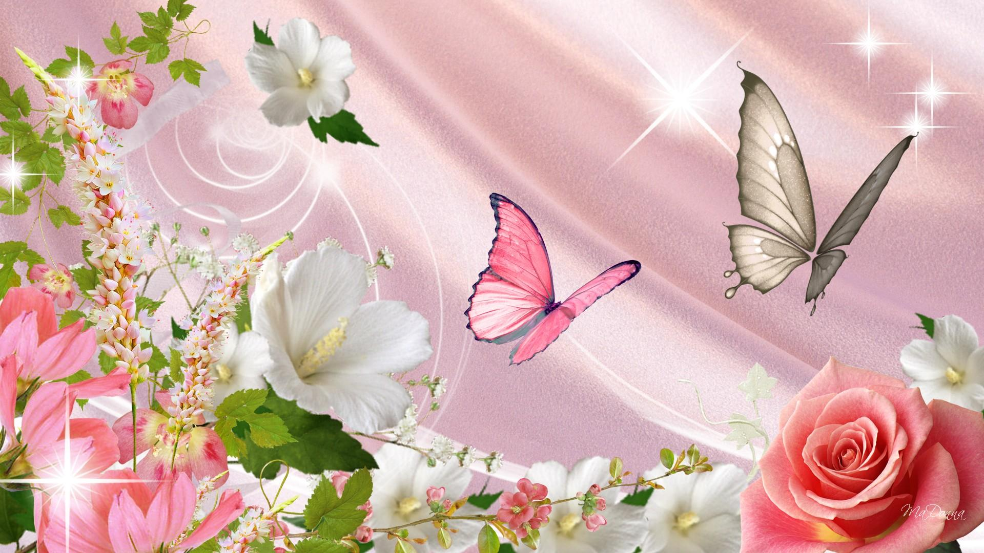 1920x1080 Hình nền con bướm xuân