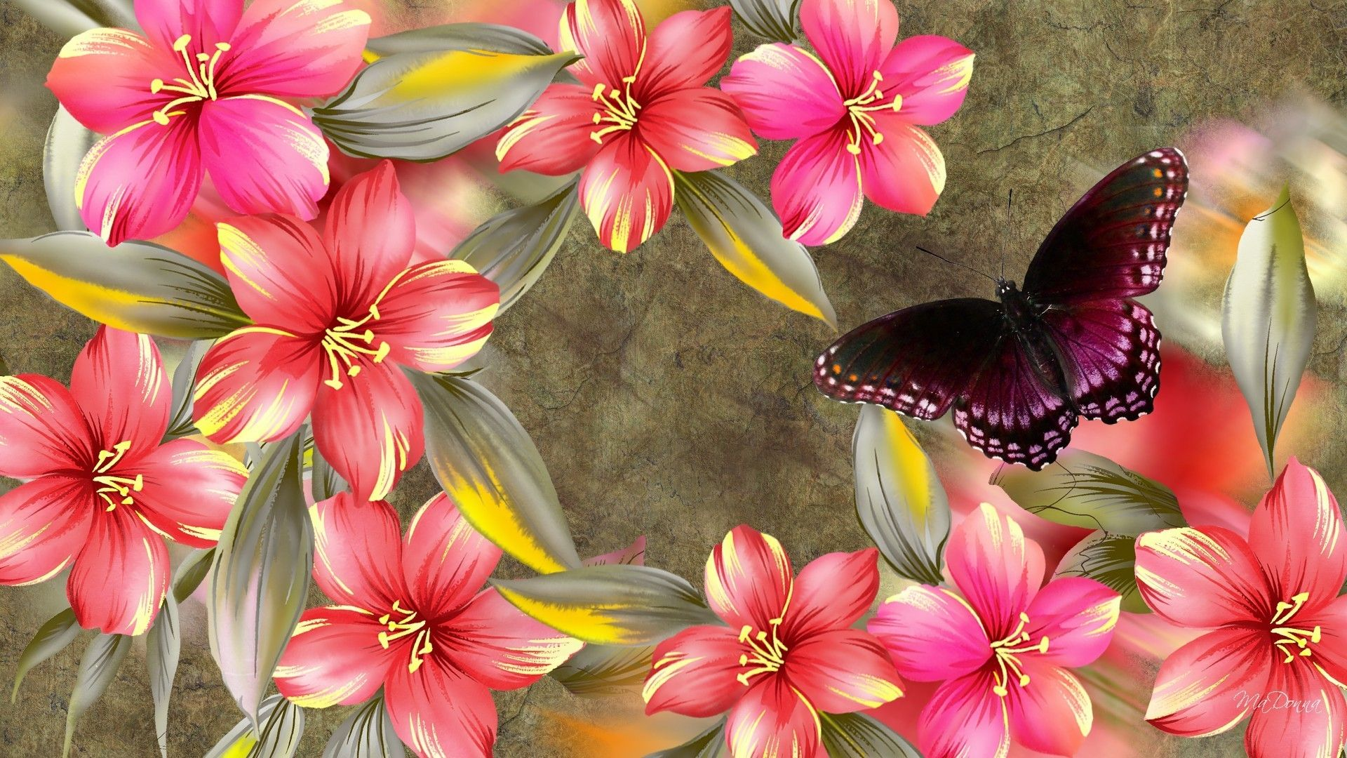 Hình nền máy tính hình nền con bướm, bướm 1920x1080
