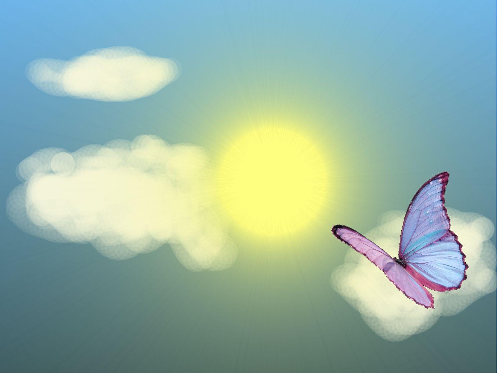 Hình nền con bướm mùa hè 1600x1200