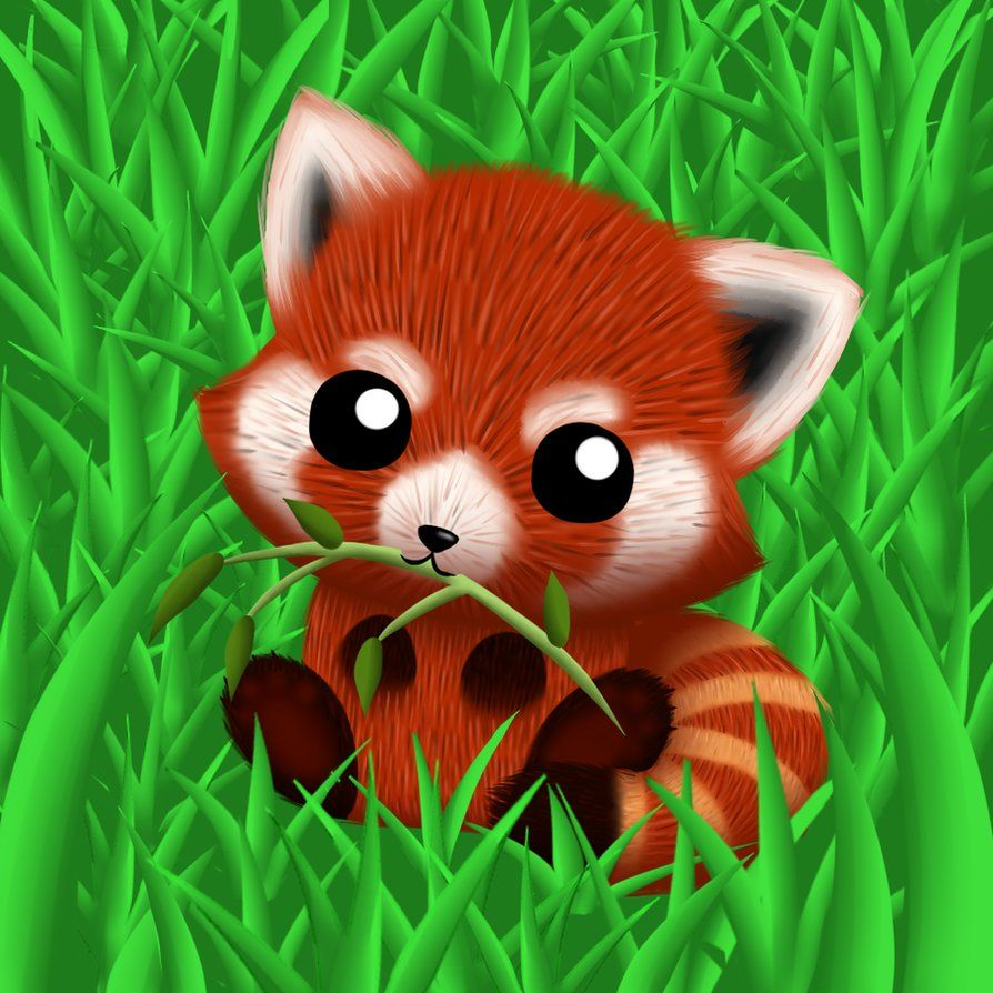 Wallpaper Cartoon Cute Red Panda