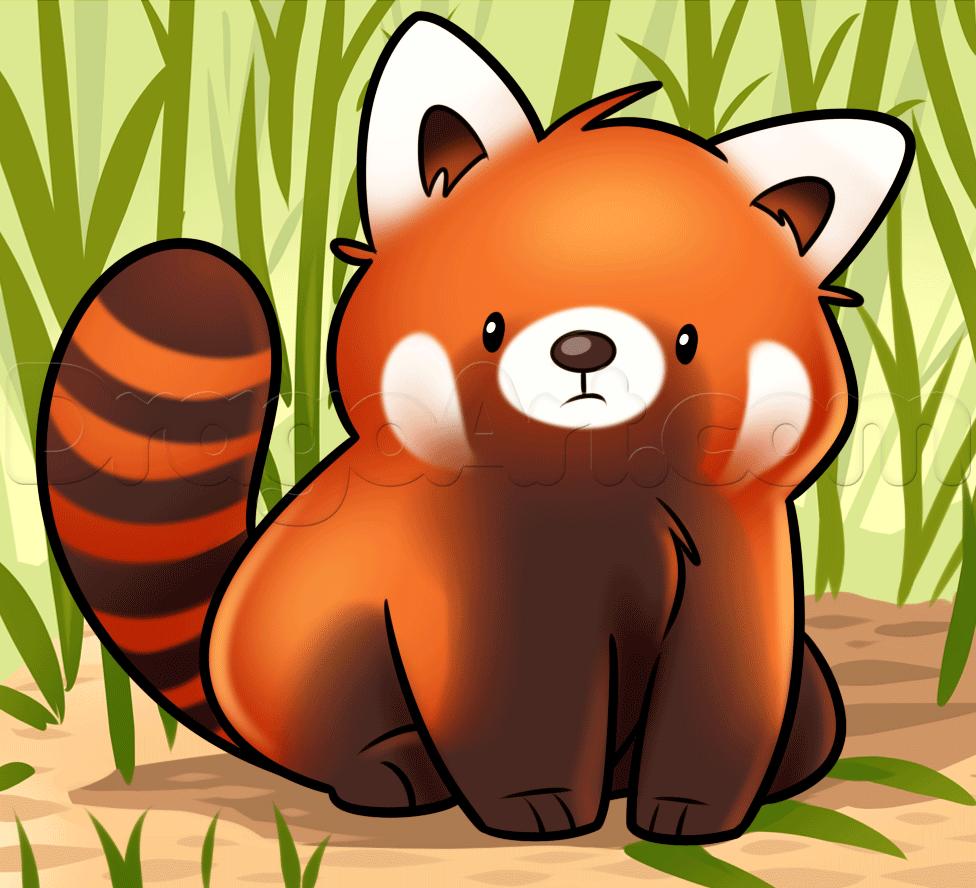 Red Panda Cute Cartoon Wallpapers Top Free Red Panda Cute Cartoon Backgrounds Wallpaperaccess