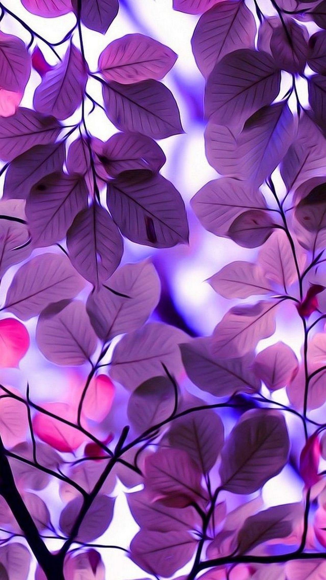 Beautiful Iphone Wallpapers Top Free Beautiful Iphone Backgrounds Wallpaperaccess