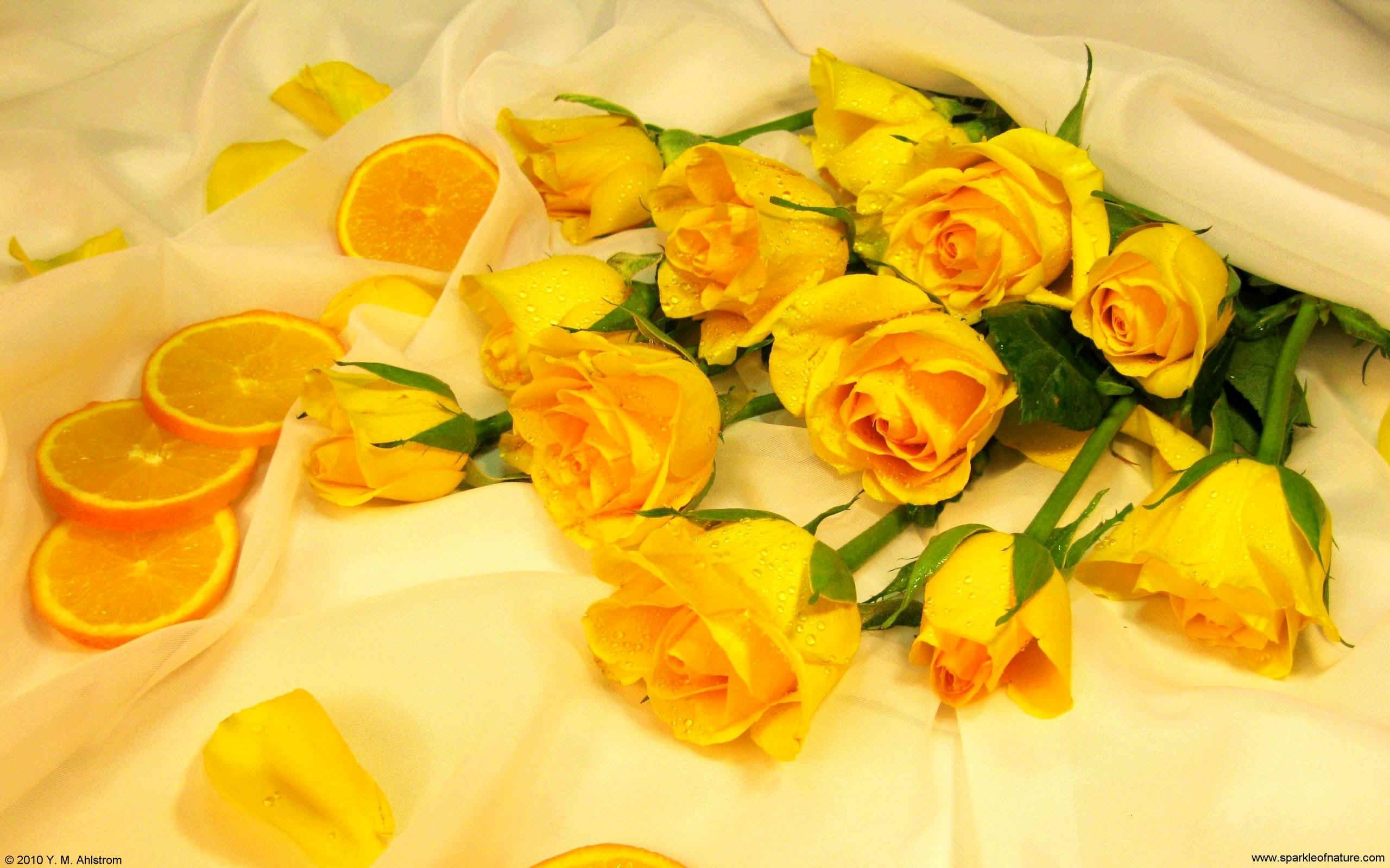 Yellow Desktop Wallpapers , Top Free Yellow Desktop