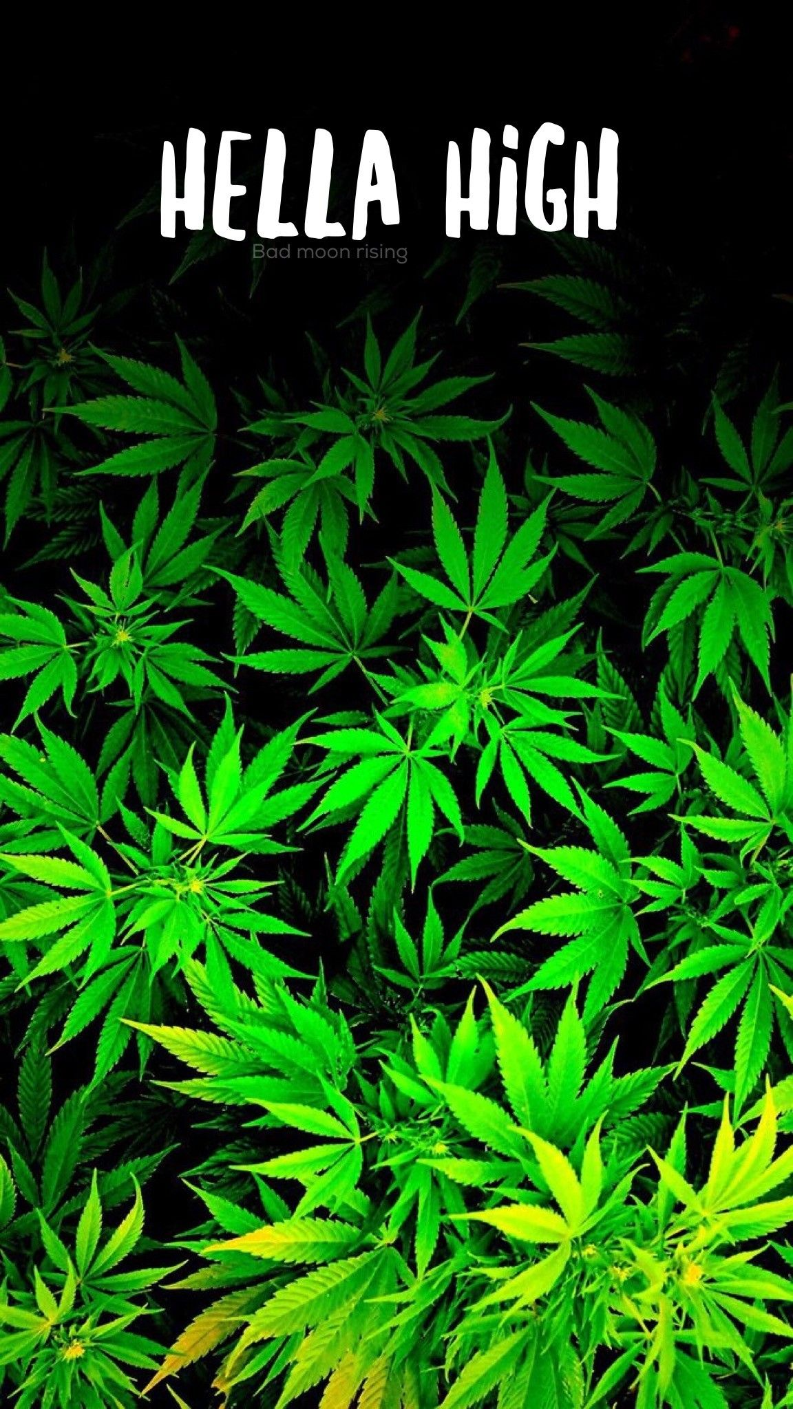 Supreme Weed Wallpapers Top Free Supreme Weed Backgrounds