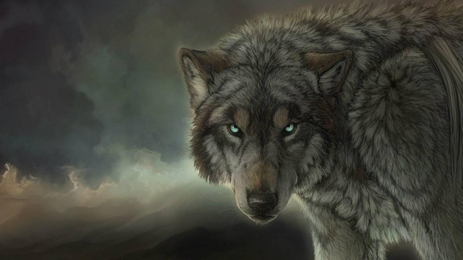 Lone Wolf Hd Wallpapers Top Free Lone Wolf Hd Backgrounds