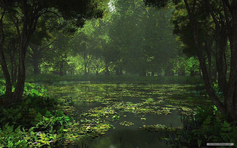 3d Landscape Desktop Wallpapers Top Free 3d Landscape