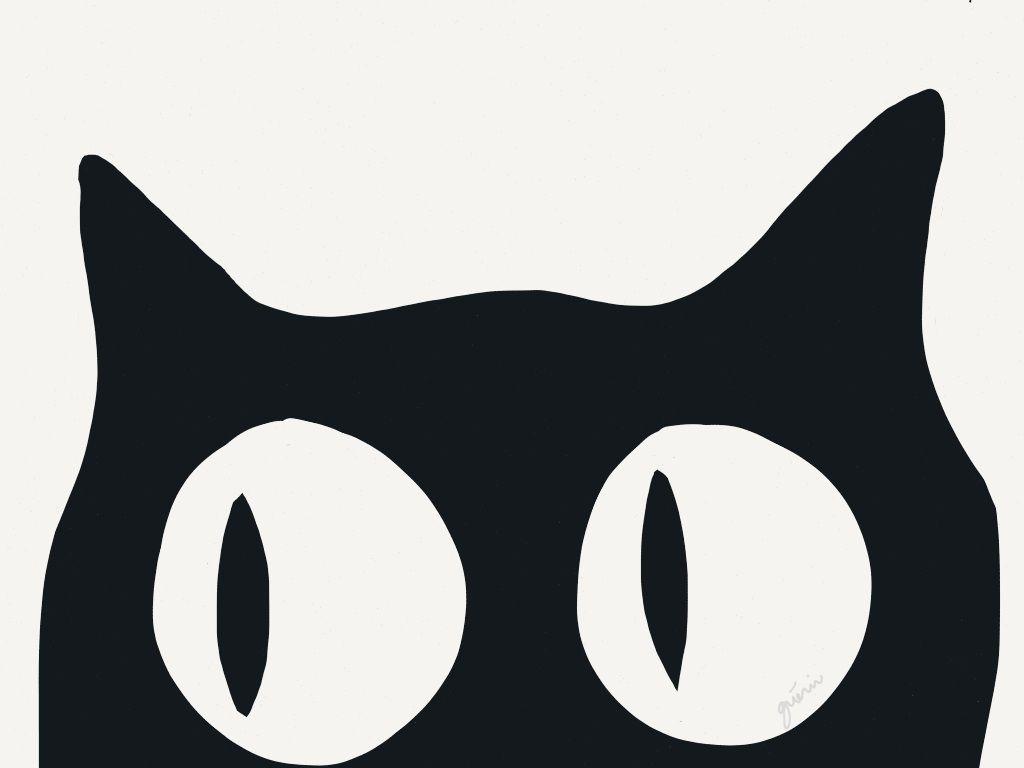 Tumblr Hipster Cat Wallpapers Top Free Tumblr Hipster Cat