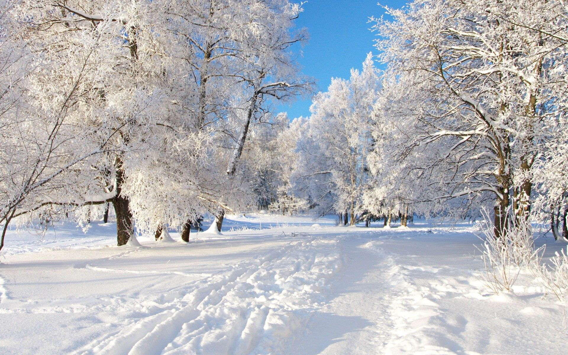 Winter hd desktop wallpapers top free winter hd desktop - Winter desktop ...