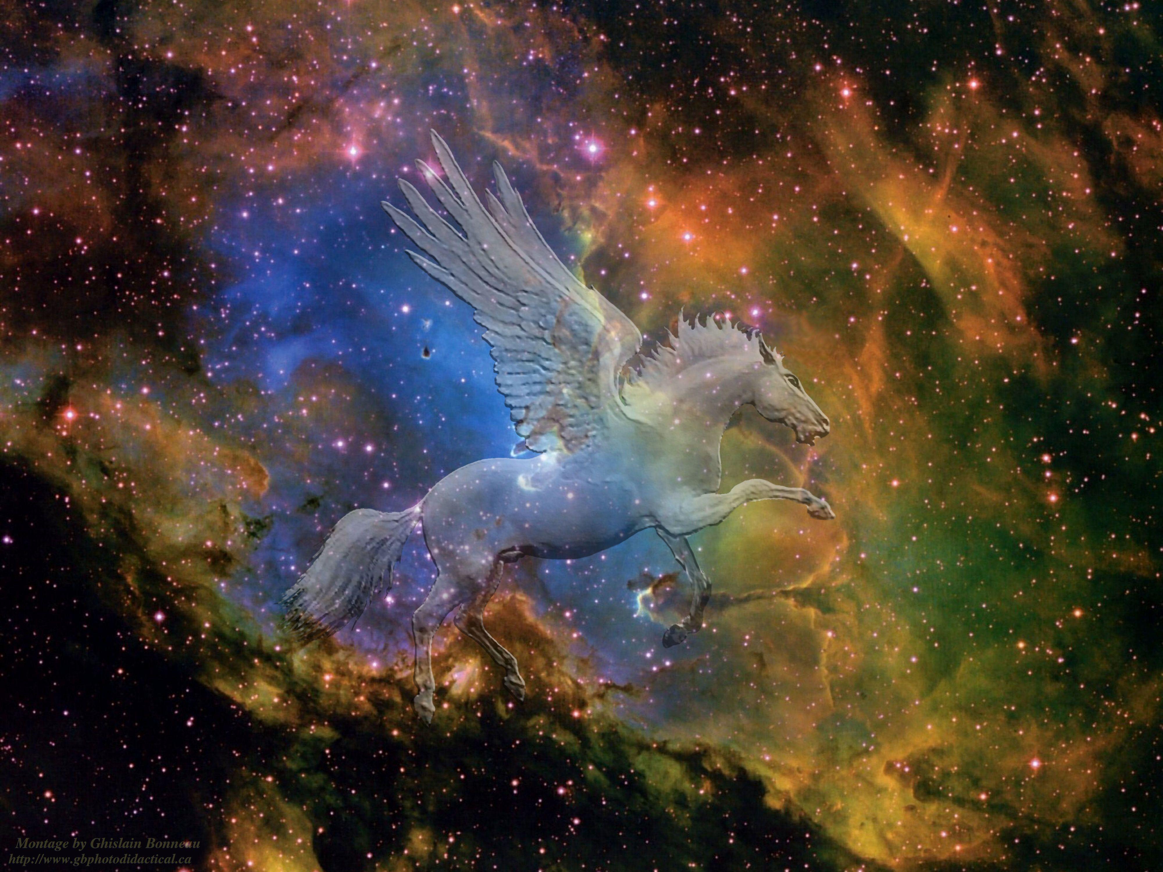 картинки лошадь космос ловля карася