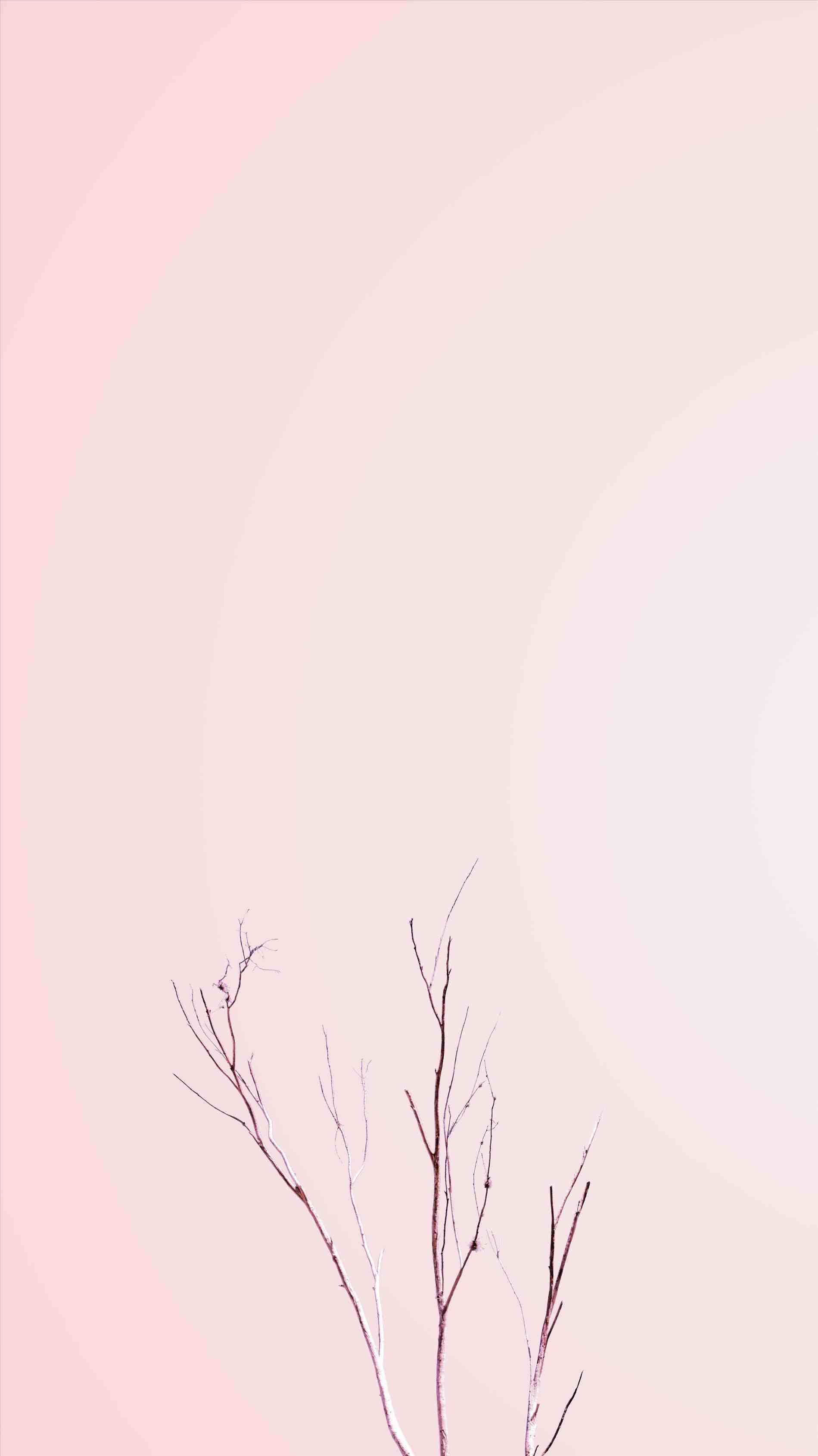 Simple Aesthetic Wallpapers Top Free Simple Aesthetic Backgrounds