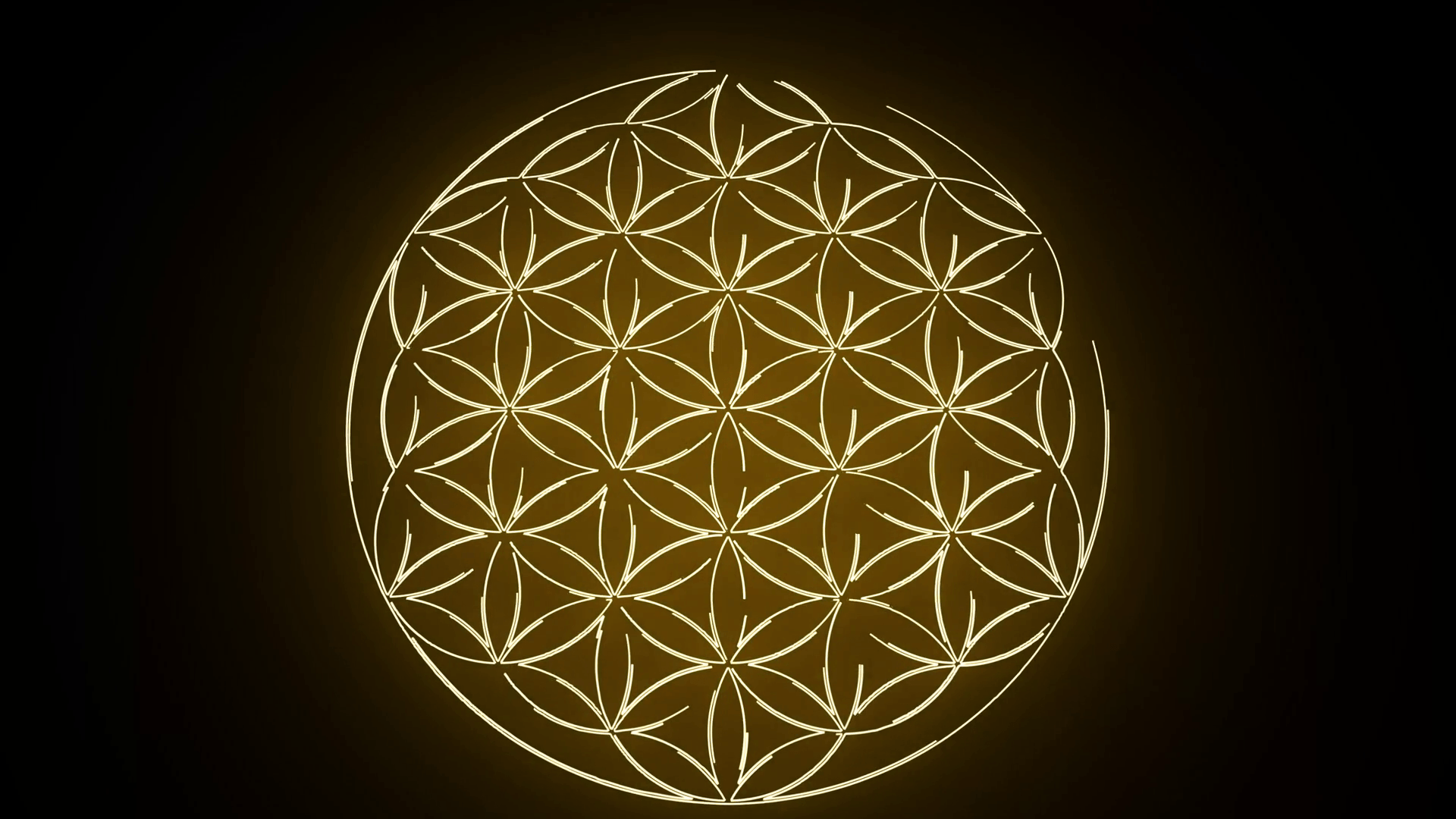 Flower Of Life Wallpapers Top Free Flower Of Life Backgrounds Wallpaperaccess