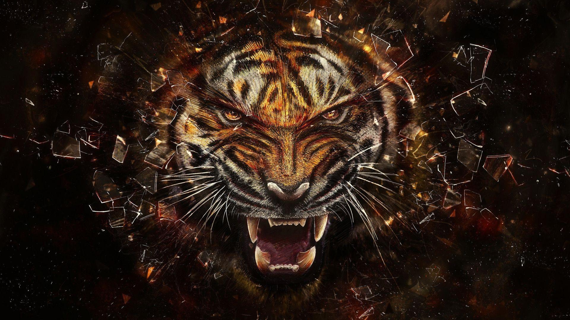 Tiger Vs Dragon Wallpapers Top Free Tiger Vs Dragon Backgrounds