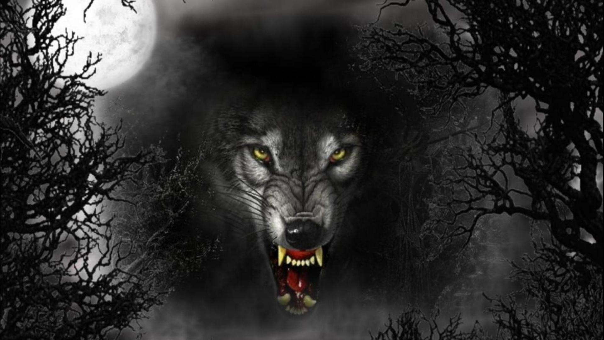 Demon Wolf Wallpapers Top Free Demon Wolf Backgrounds