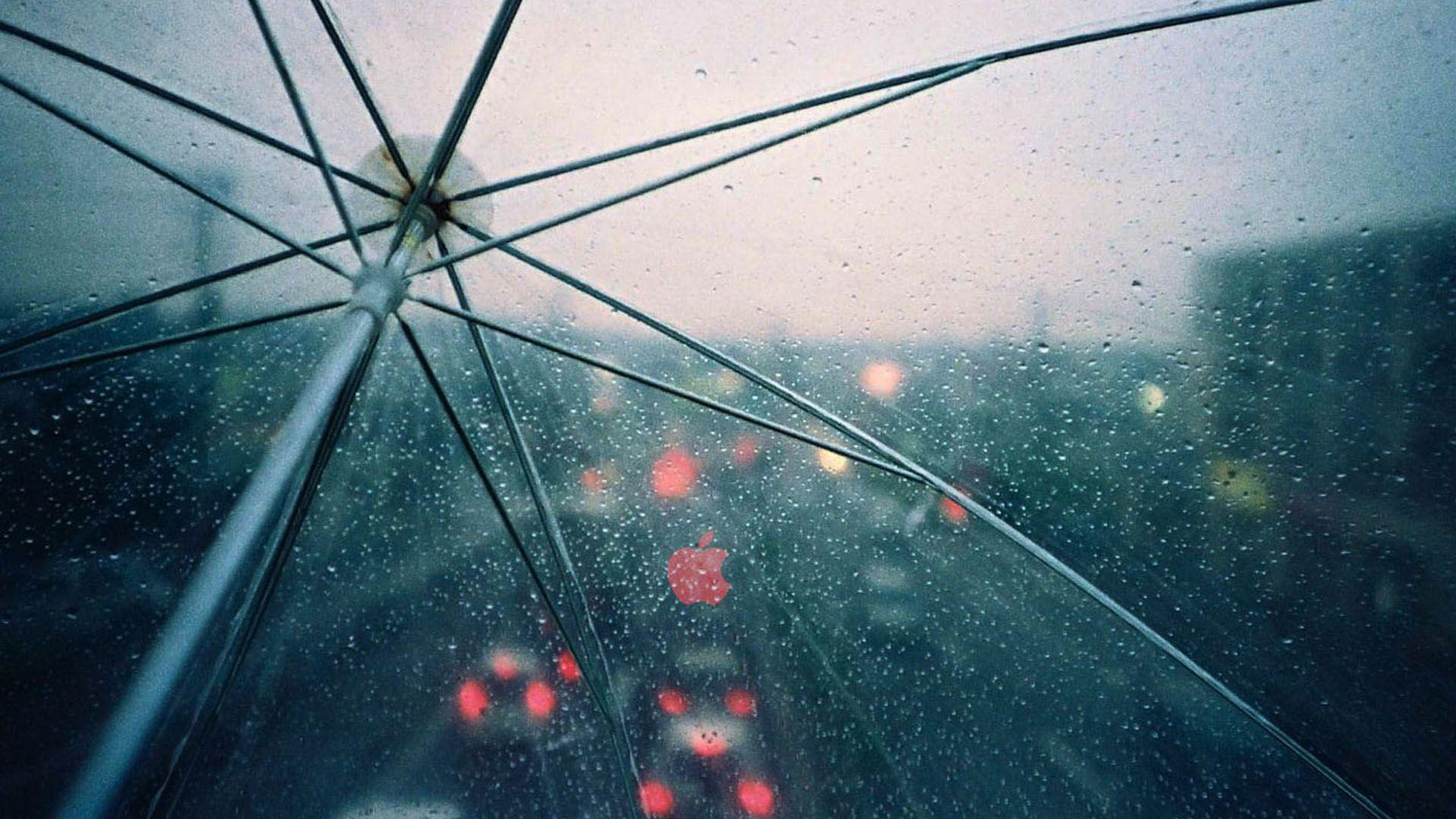 1280x800 25 Raindrops Wallpapers For Your Desktop