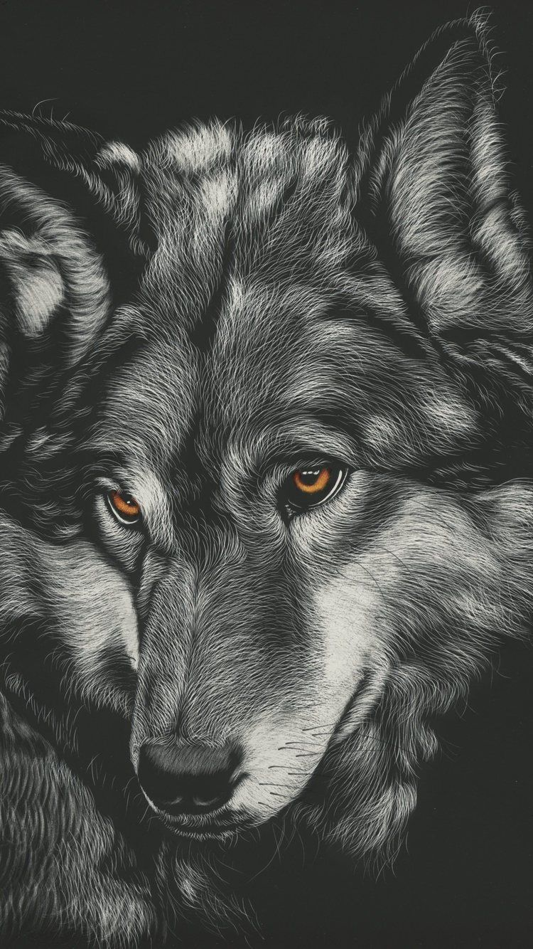 Wolf Iphone 6 Wallpapers Top Free Wolf Iphone 6 Backgrounds