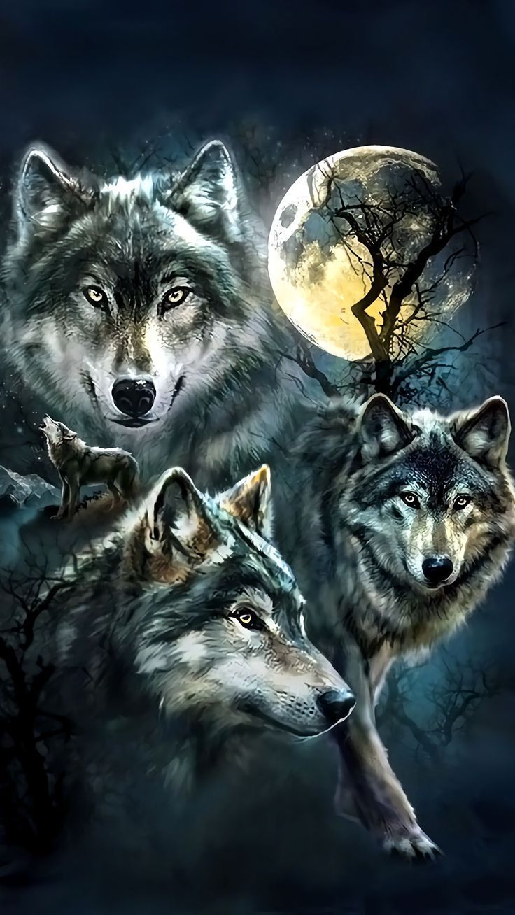 Dream Wolf iPhone Wallpapers - Top Free
