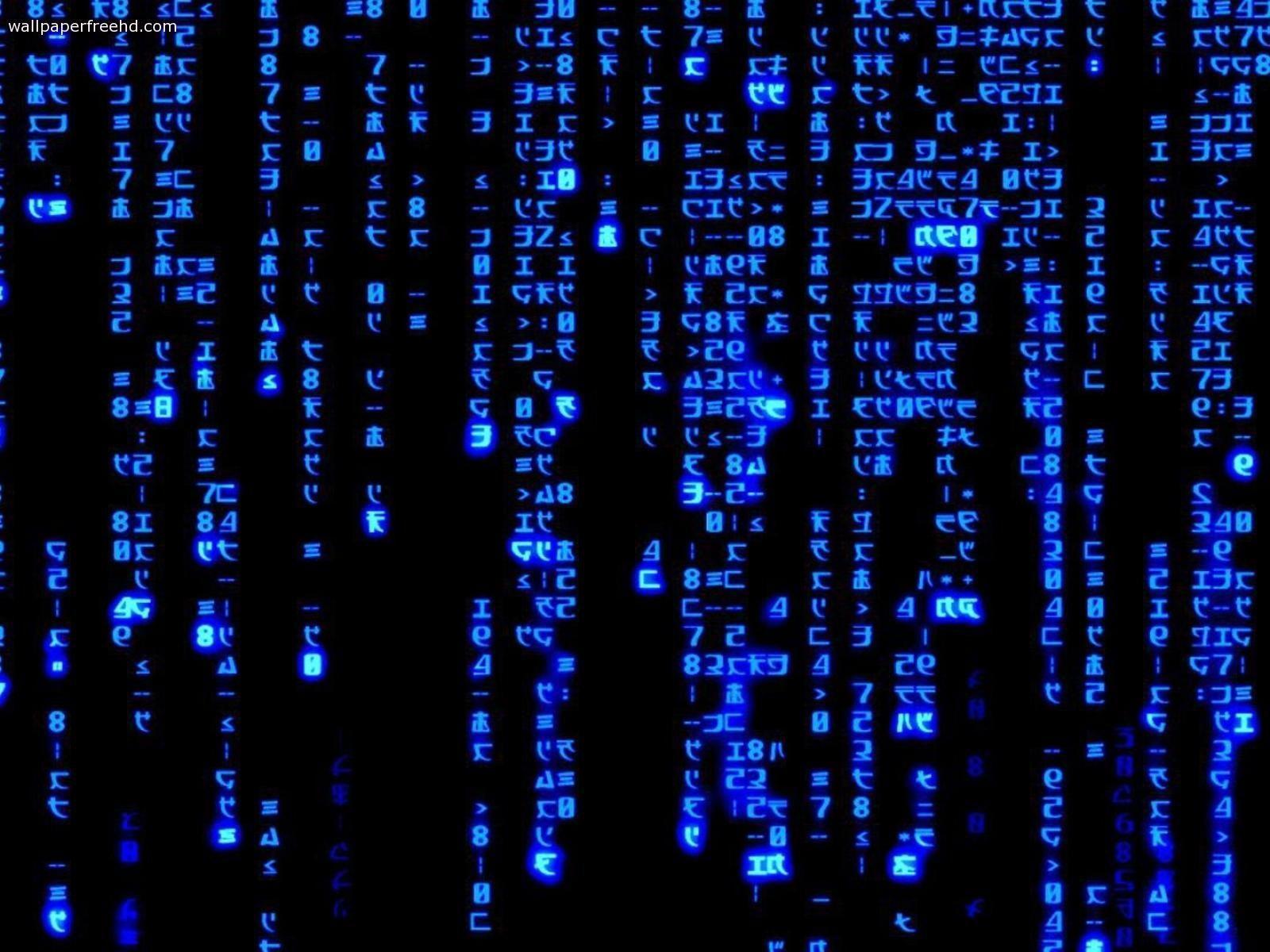 Live Binary Code Wallpapers Top Free Live Binary Code