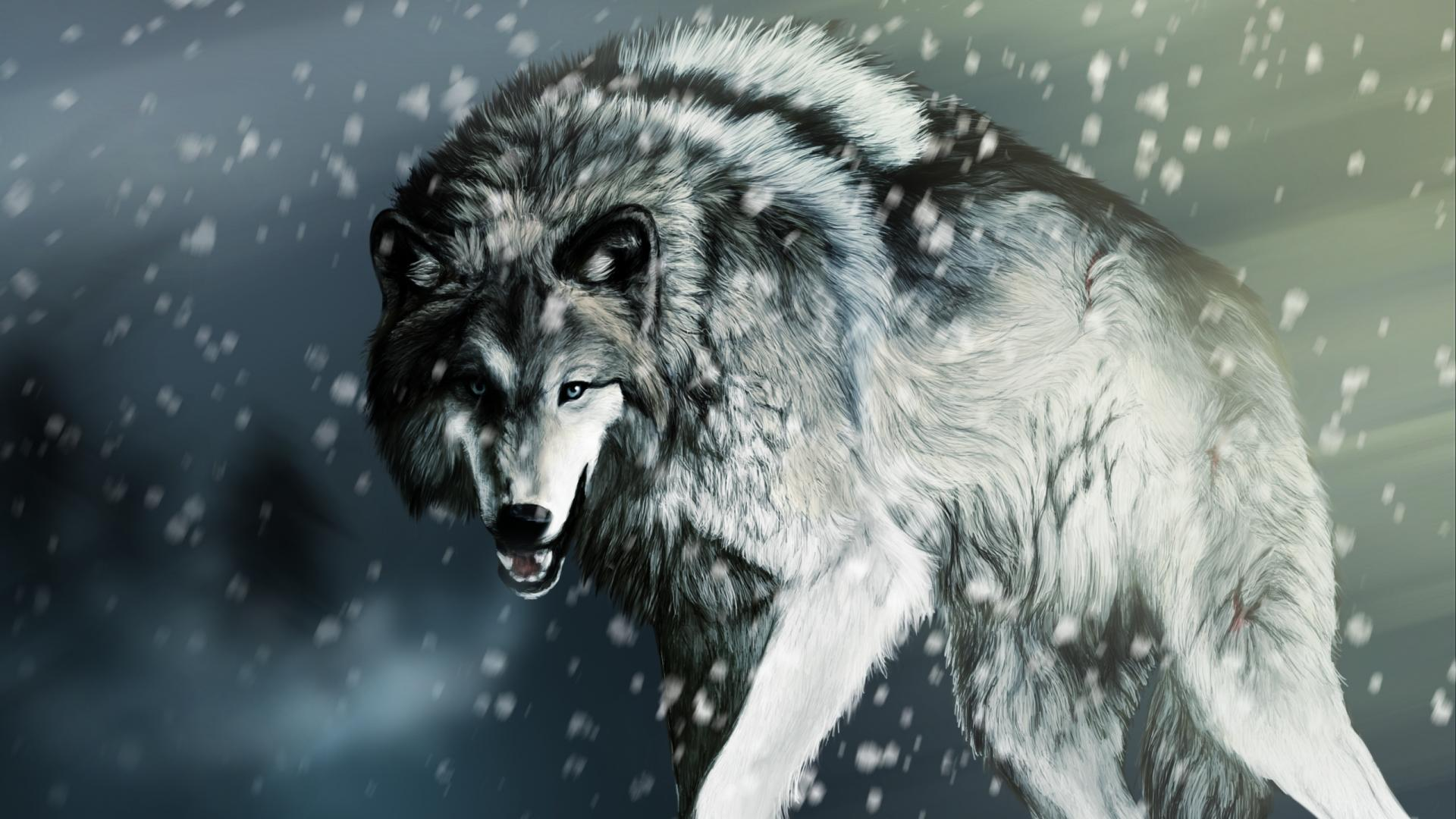 1920x1080 Wolf Wallpapers 1920x1080