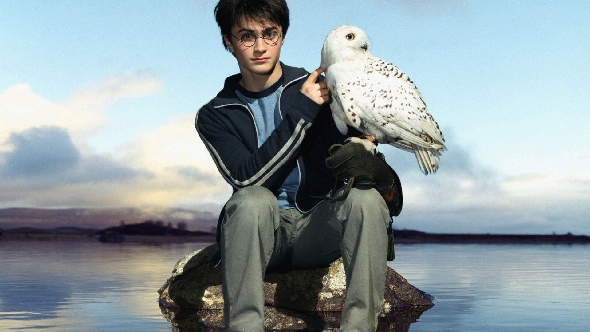 Hedwig IPhone Wallpapers
