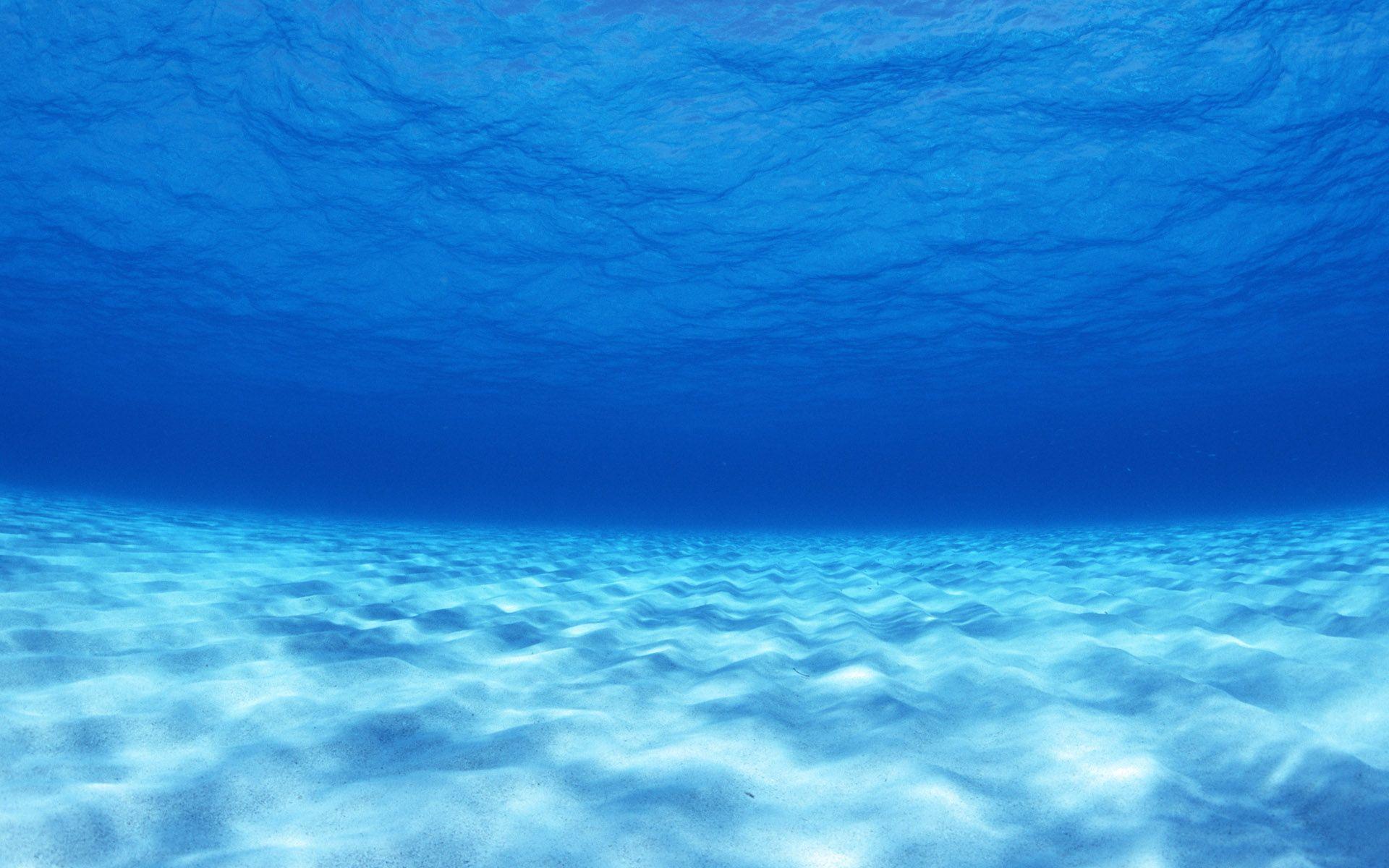 4K Ultra HD Underwater Wallpapers - Top Free 4K Ultra HD ...