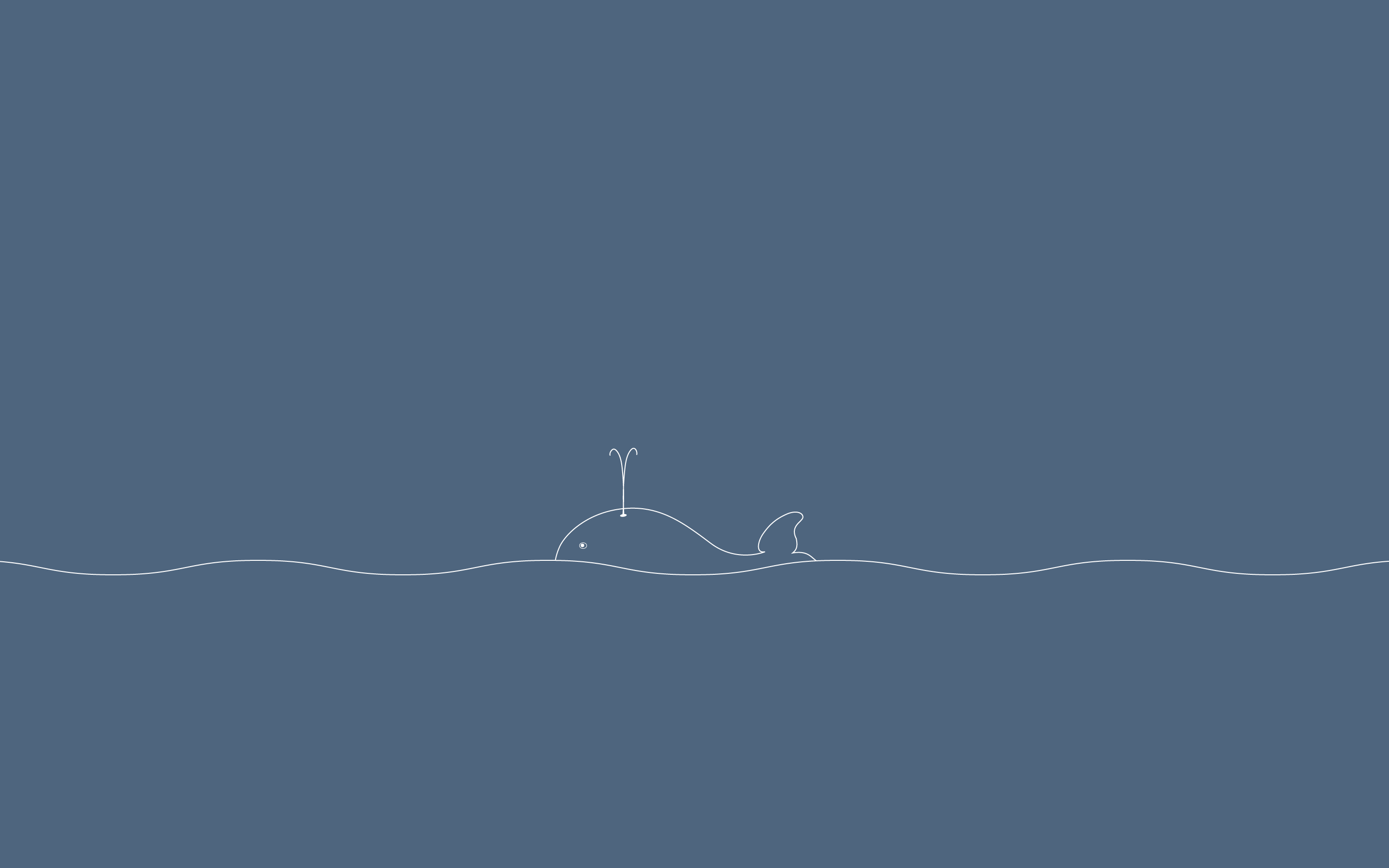 Minimal Whale Wallpapers Top Free Minimal Whale