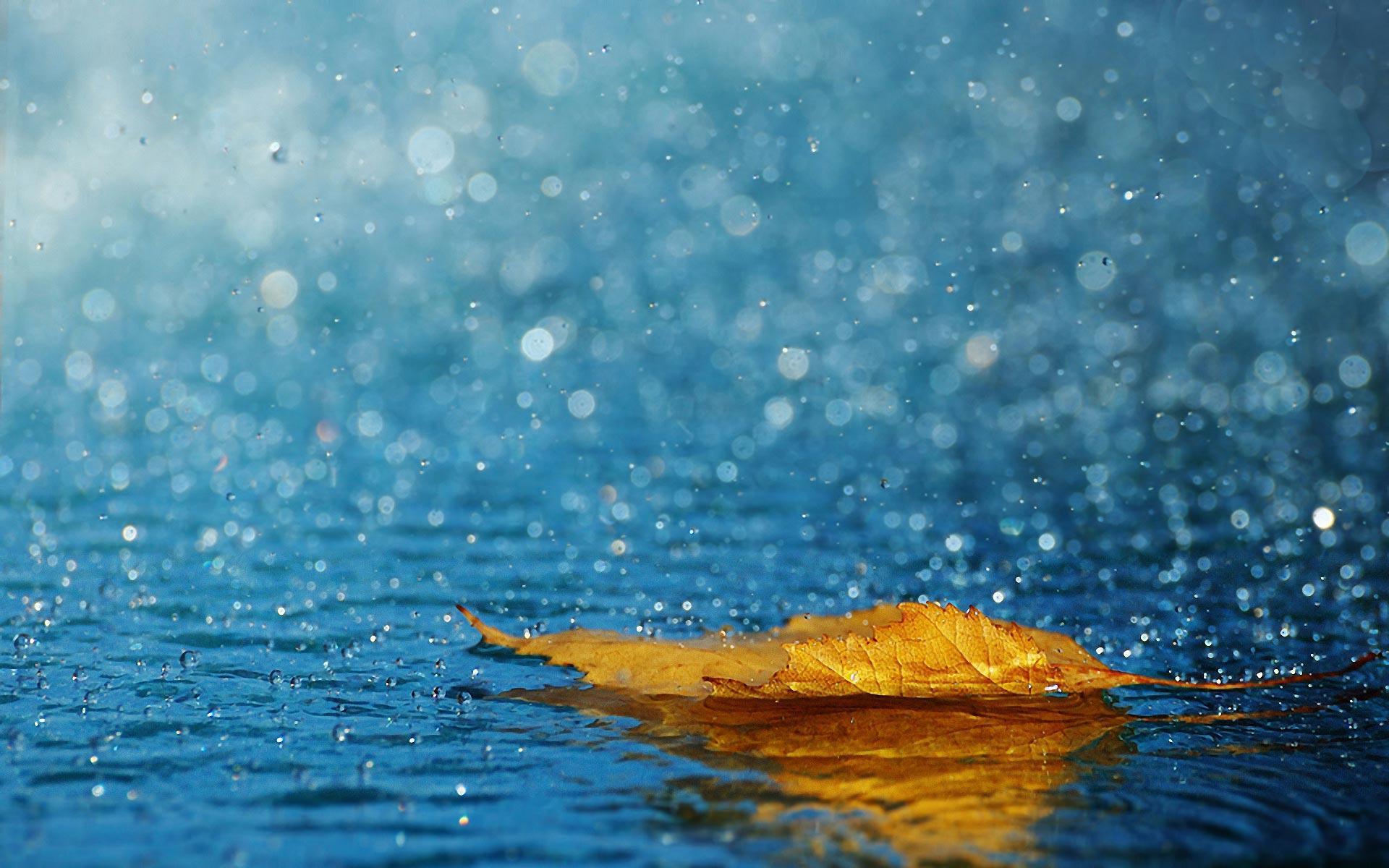 Rainfall Wallpapers Top Free Rainfall Backgrounds Wallpaperaccess