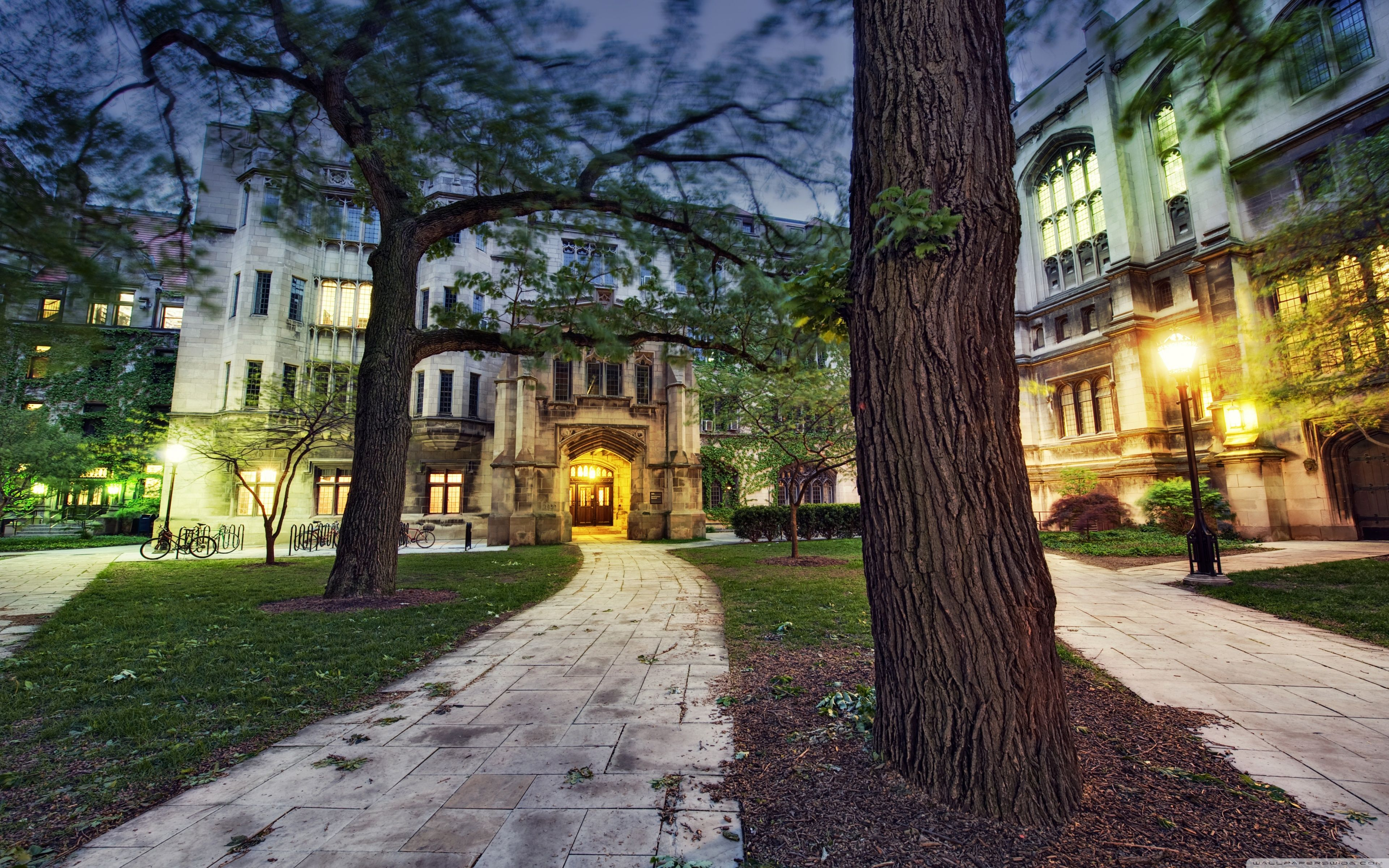 University of Chicago Wallpapers - Top Free University of ...