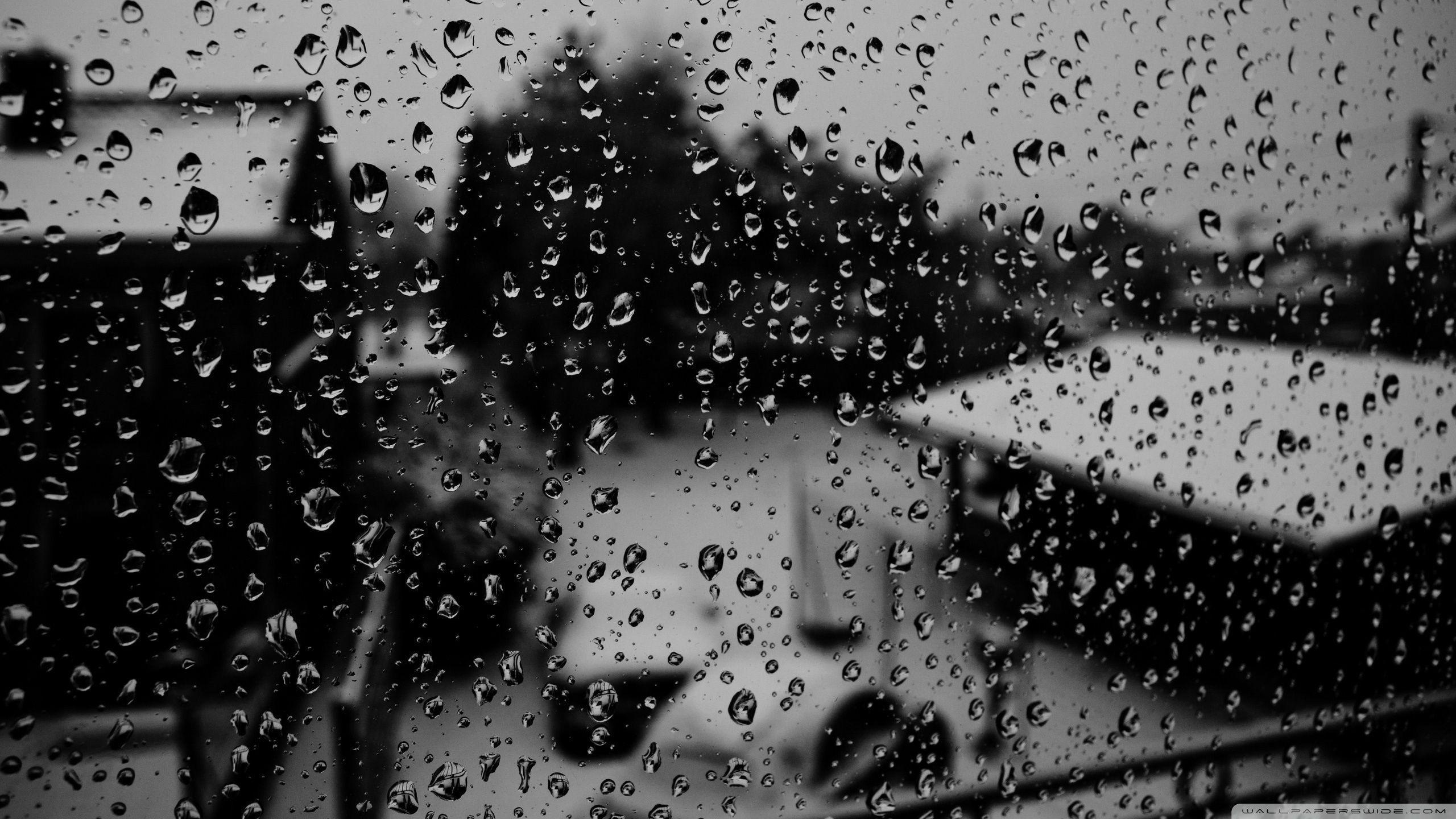 Winter Rain Wallpapers Top Free Winter Rain Backgrounds Wallpaperaccess