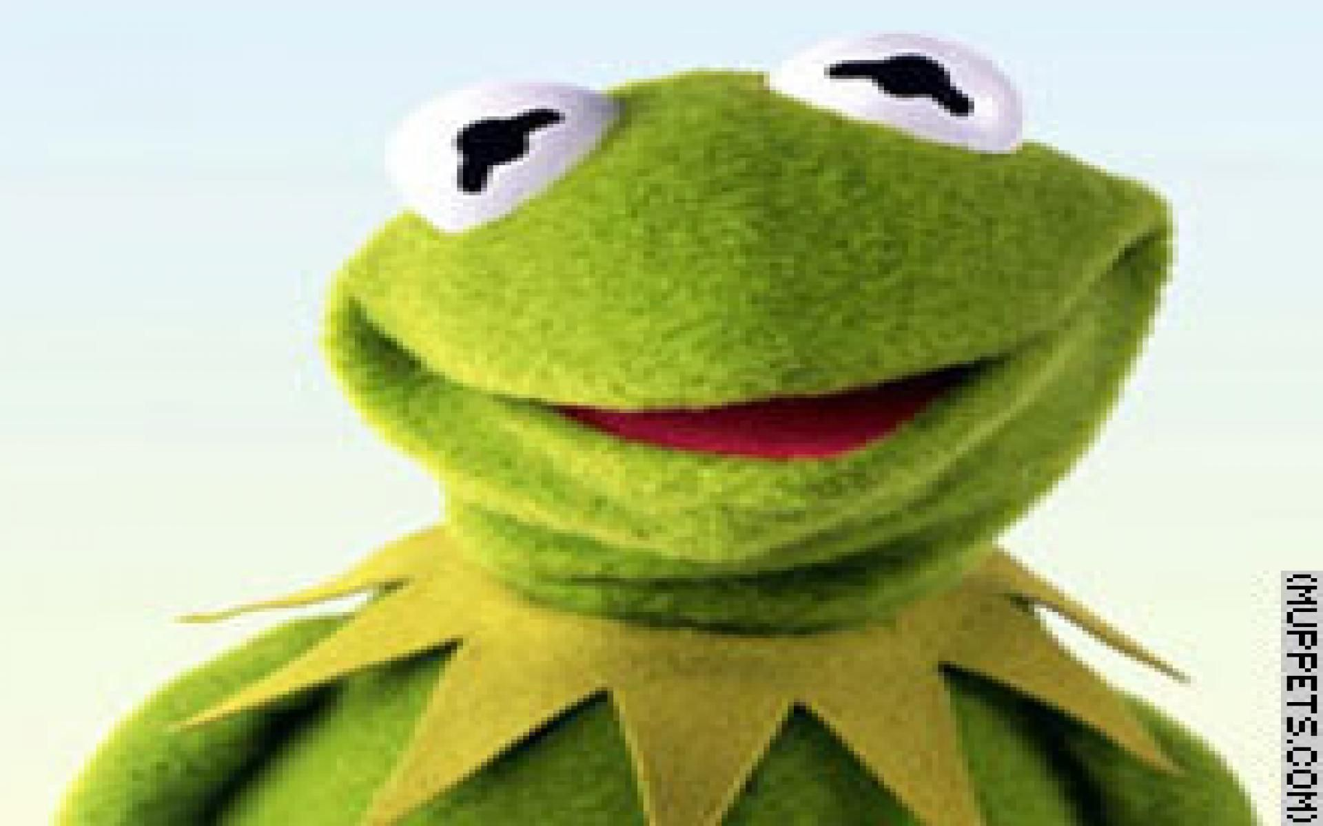 Supreme Kermit The Frog Wallpapers Top Free Supreme Kermit The