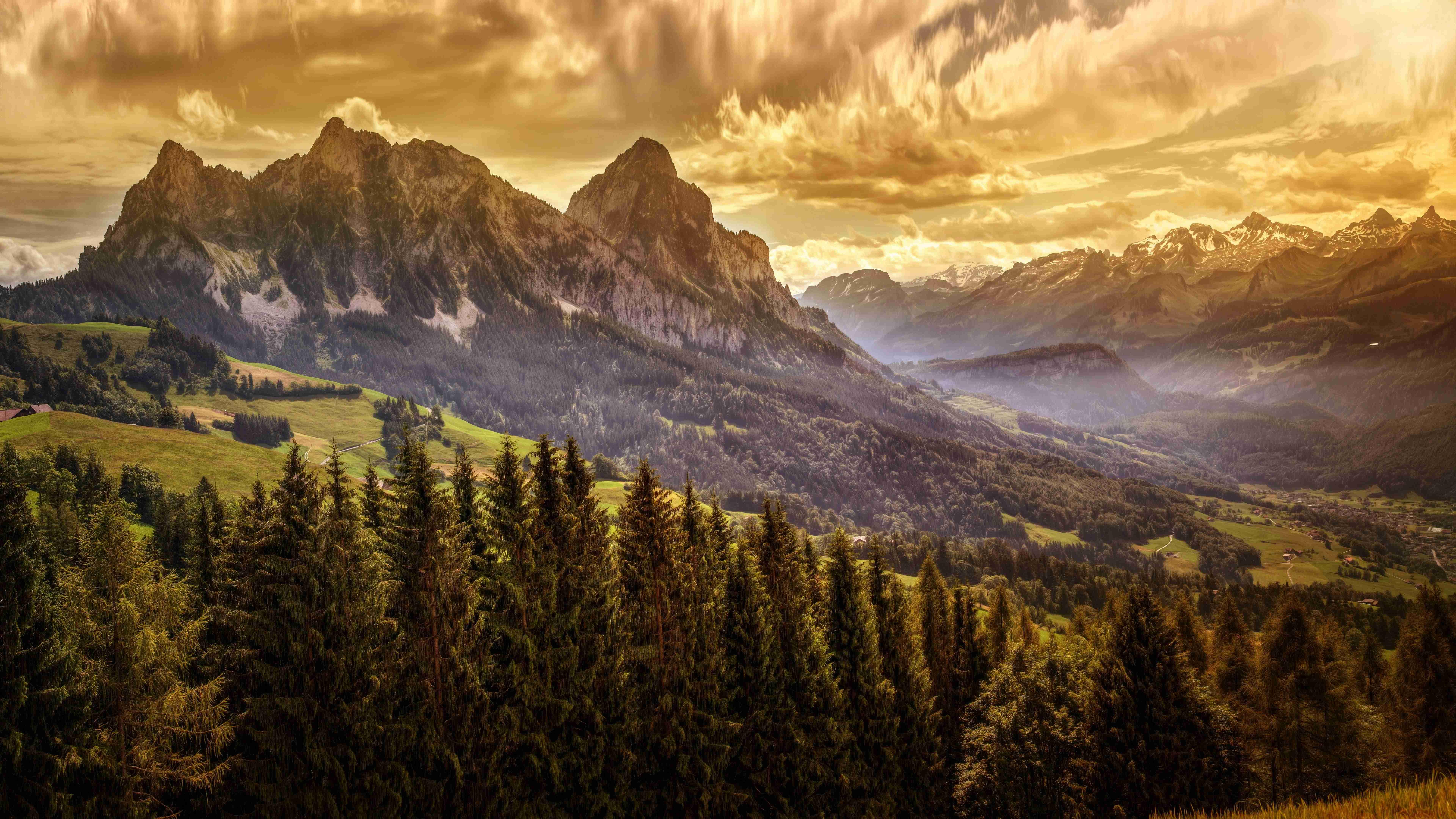 8k Animal Wallpaper Download: Top Free Nature 8K Backgrounds