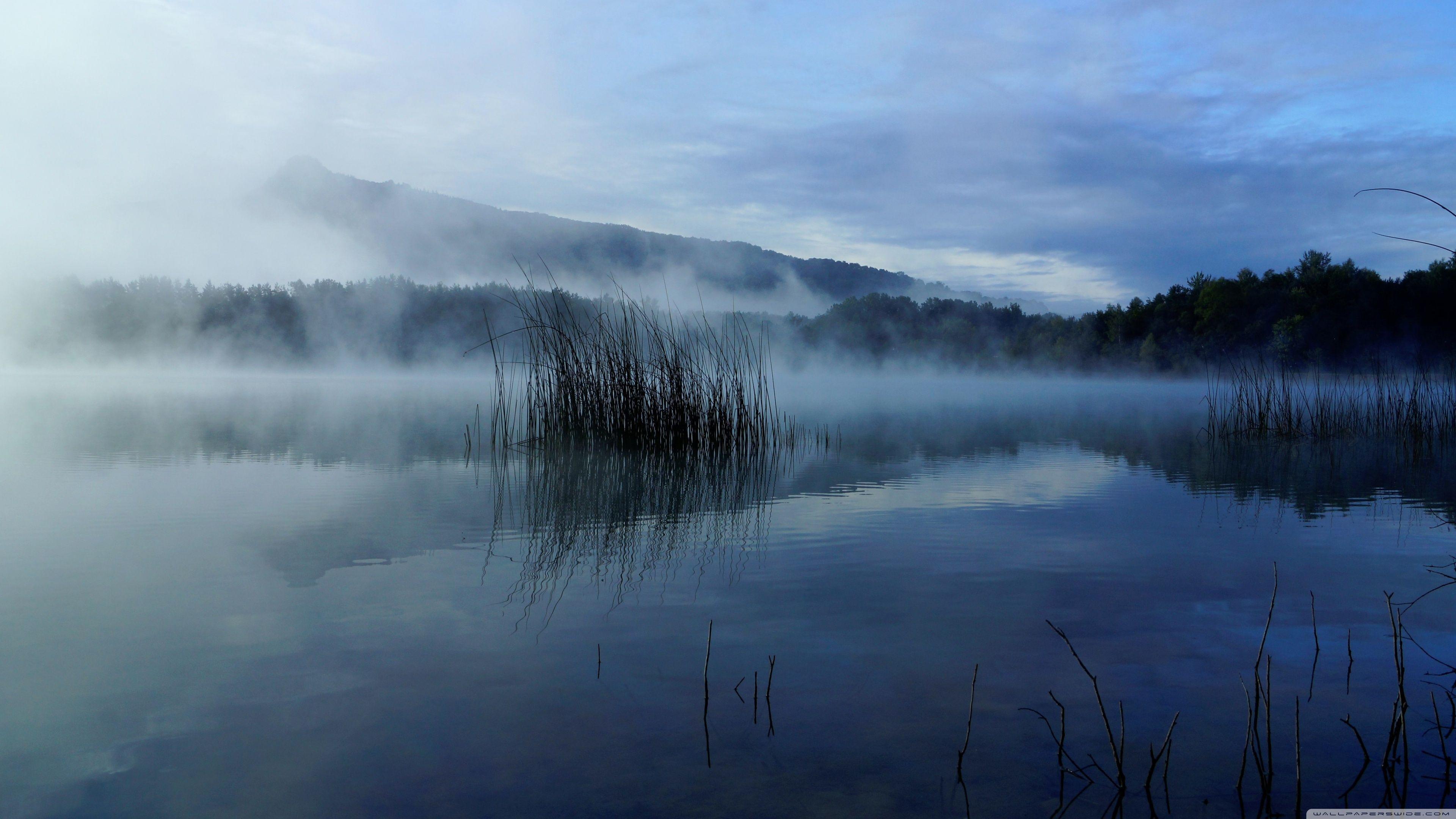 Foggy Ultra HD Landscape Wallpapers