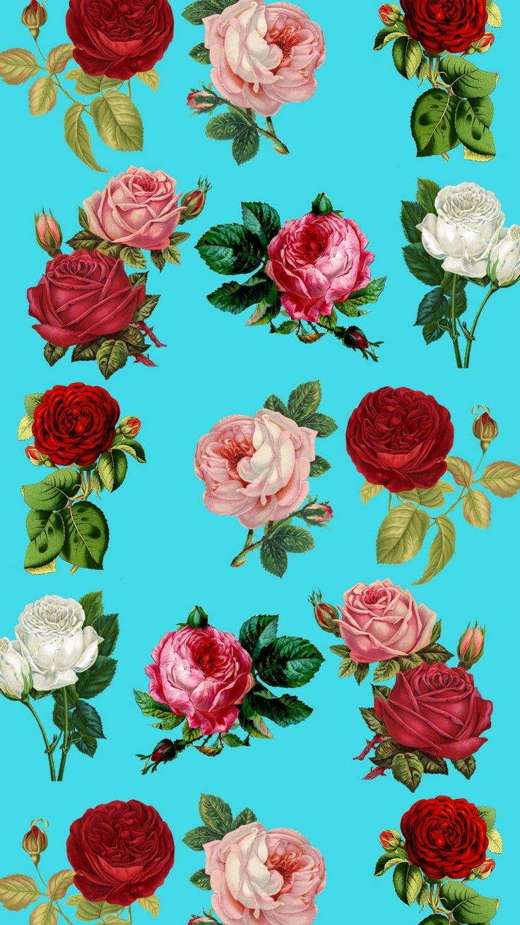 736x1308 Vintage Floral IPhone Wallpaper Collection