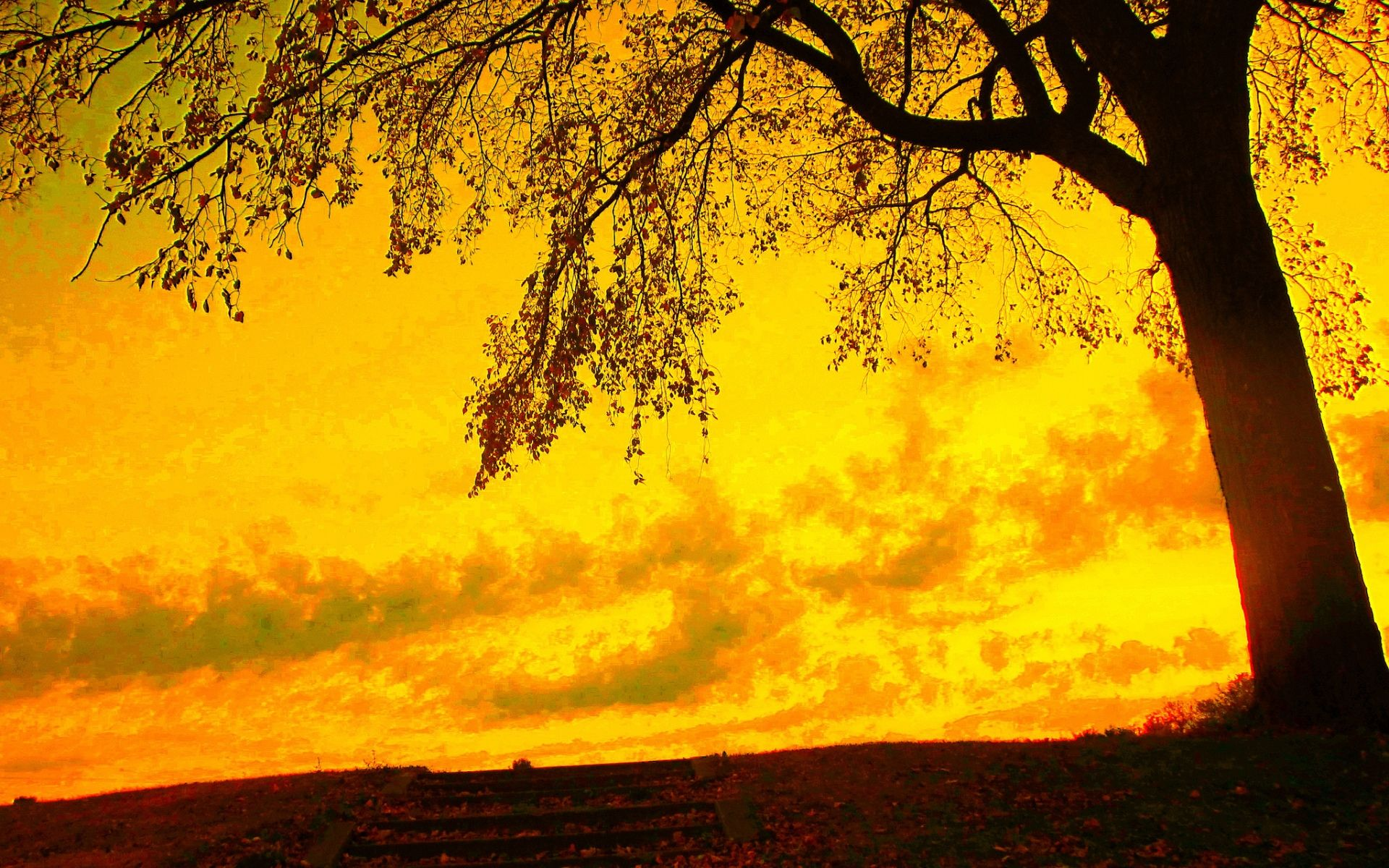 Yellow Aesthetic Sunset Wallpapers - Top Free Yellow ...