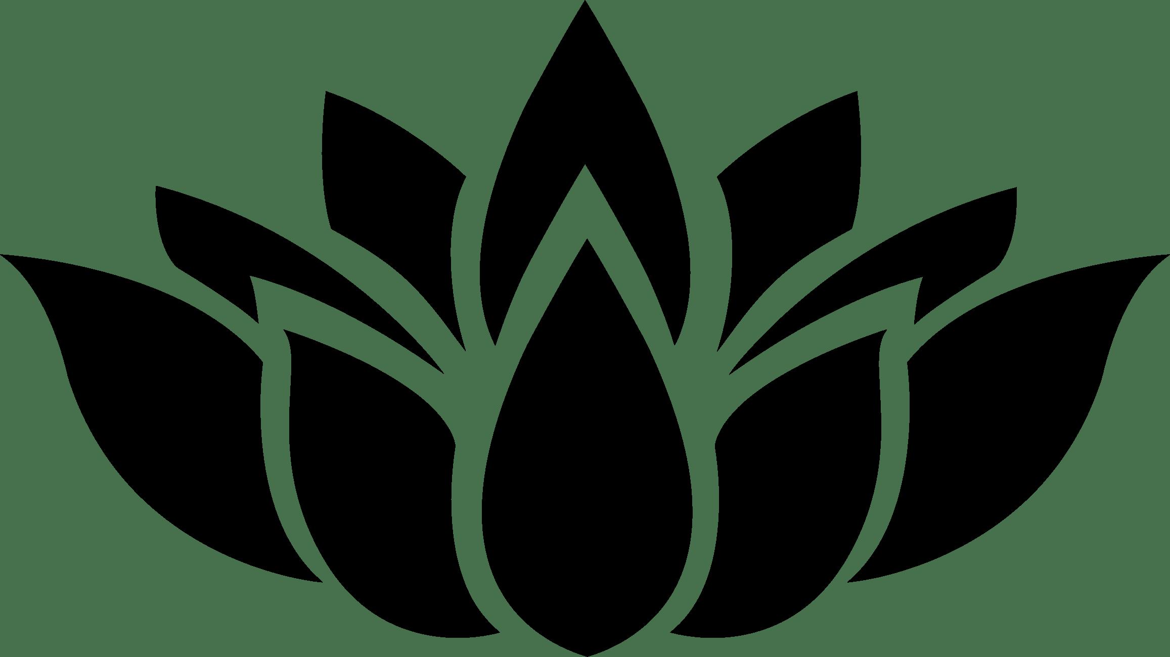 White Lotus Graphic Art Wallpapers Top Free White Lotus Graphic