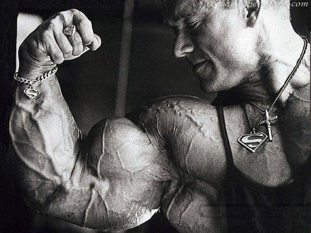 "2560x1440 Wallpaper Bodybuilder, Muscles, 5K, Lifestyle, #6352"">"
