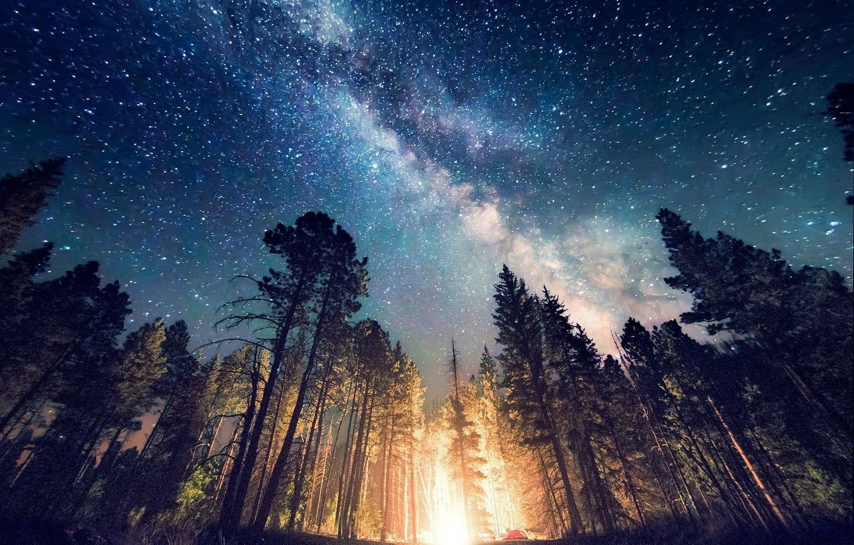 Forest Galaxy Wallpapers Top Free Forest Galaxy Backgrounds Wallpaperaccess